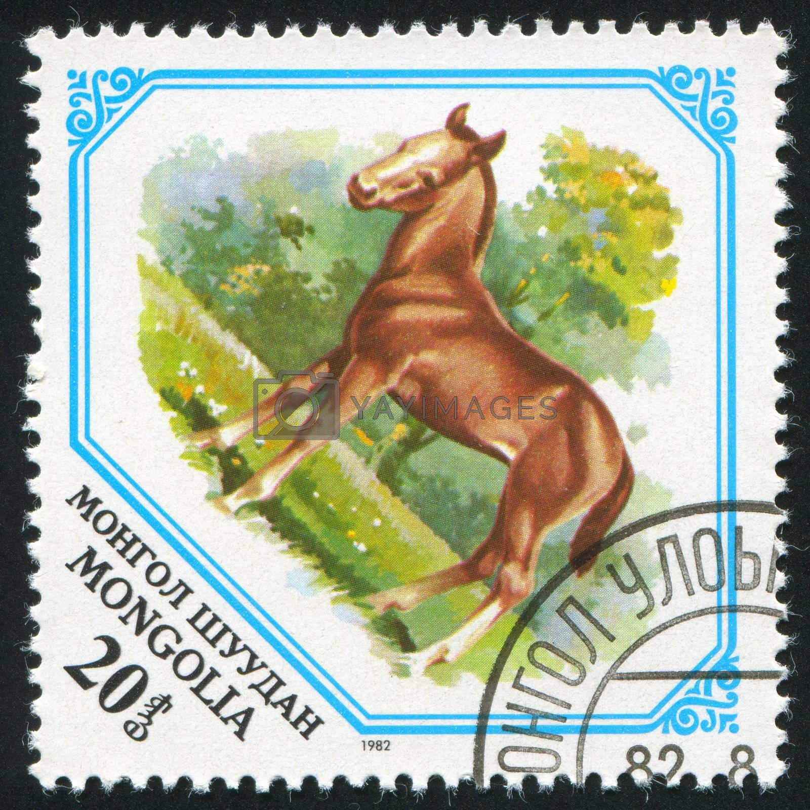 MONGOLIA - CIRCA 1982: stamp printed by Mongolia, shows Colt, circa 1982.
