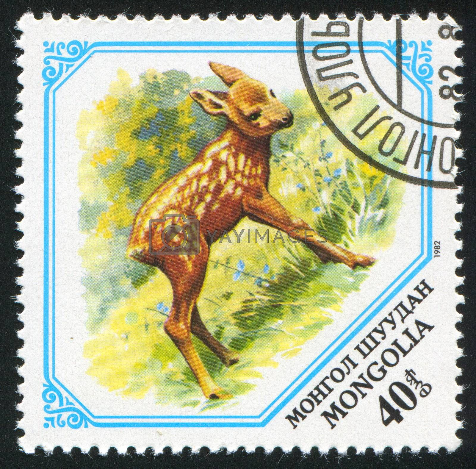 MONGOLIA - CIRCA 1982: stamp printed by Mongolia, shows Fawn, circa 1982.
