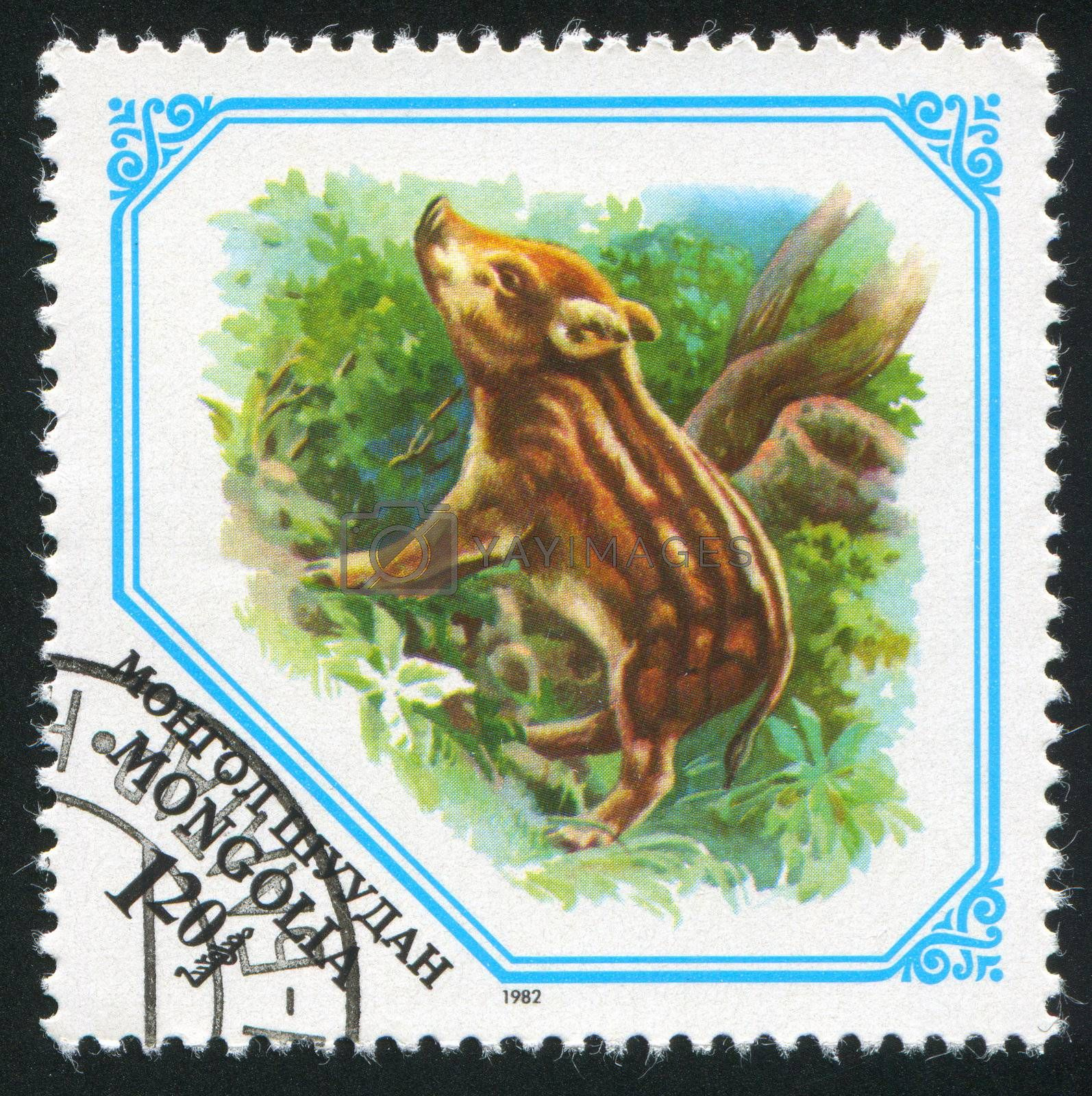 MONGOLIA - CIRCA 1982: stamp printed by Mongolia, shows Young boar, circa 1982.