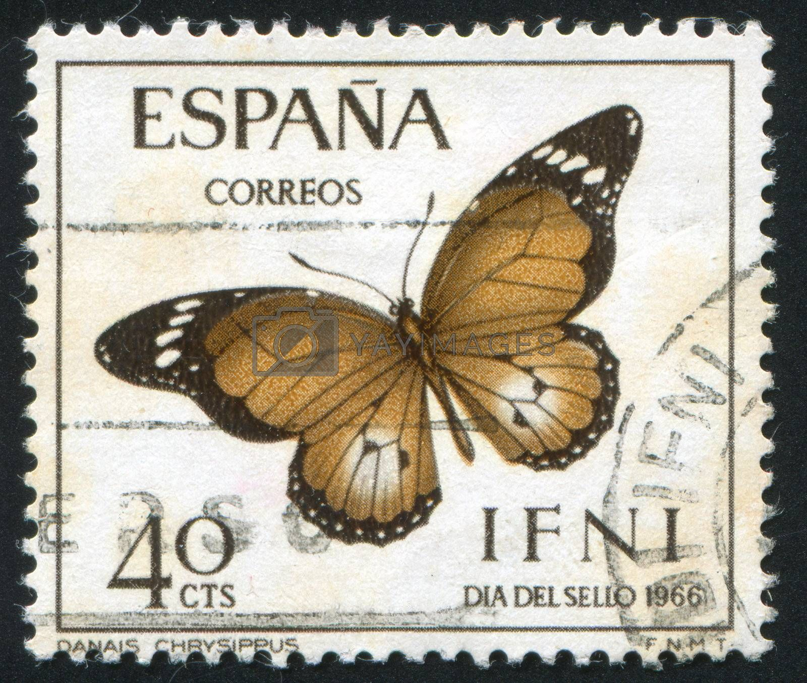 SPAIN - CIRCA 1966: stamp printed by Spain, shows butterfly, circa 1966.
