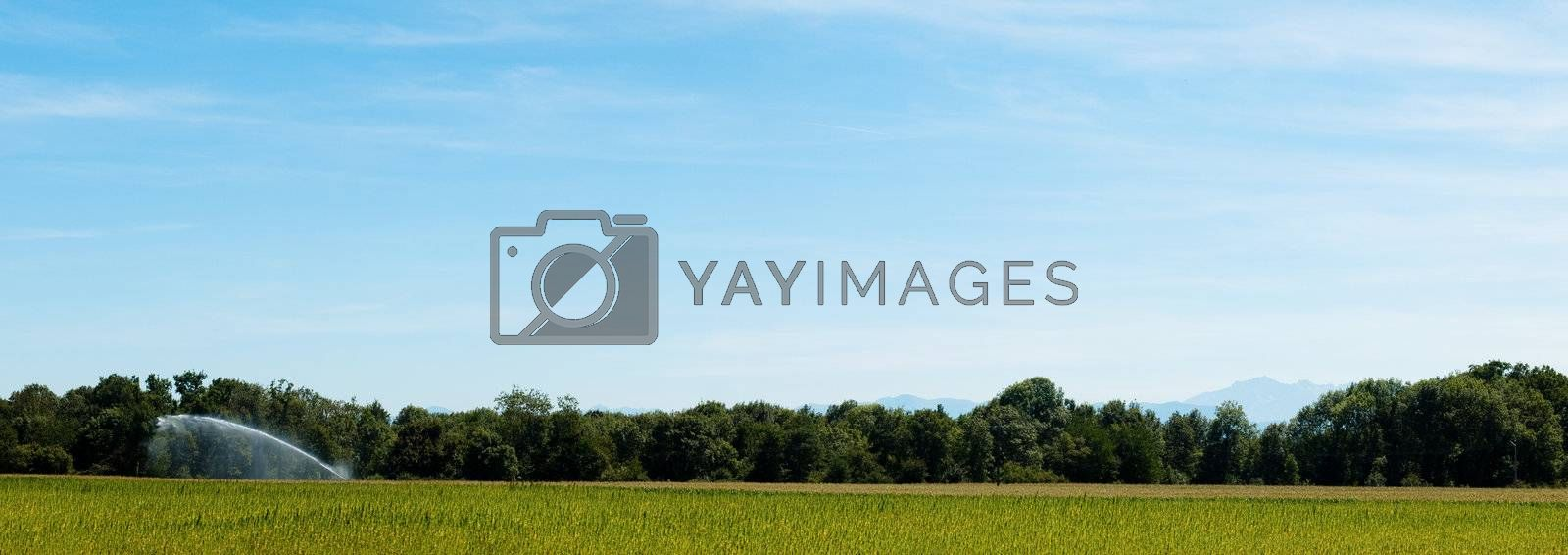 Panoramic countryside landscape by ldambies