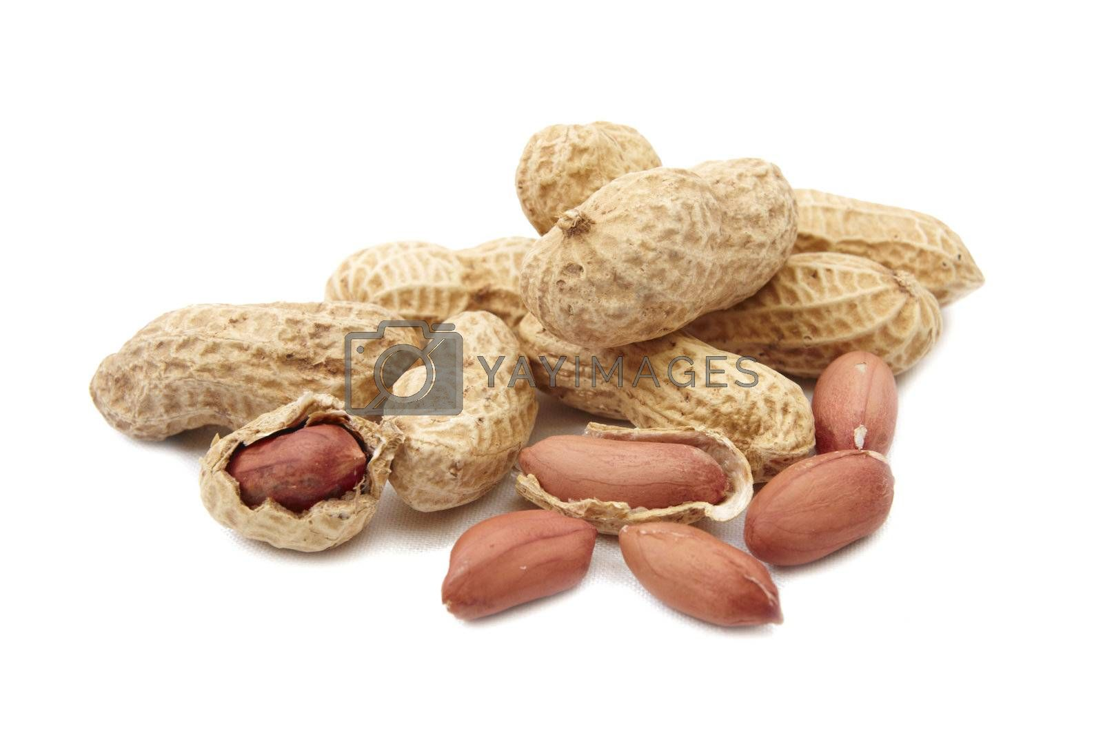 Close-up of group peanuts on white background
