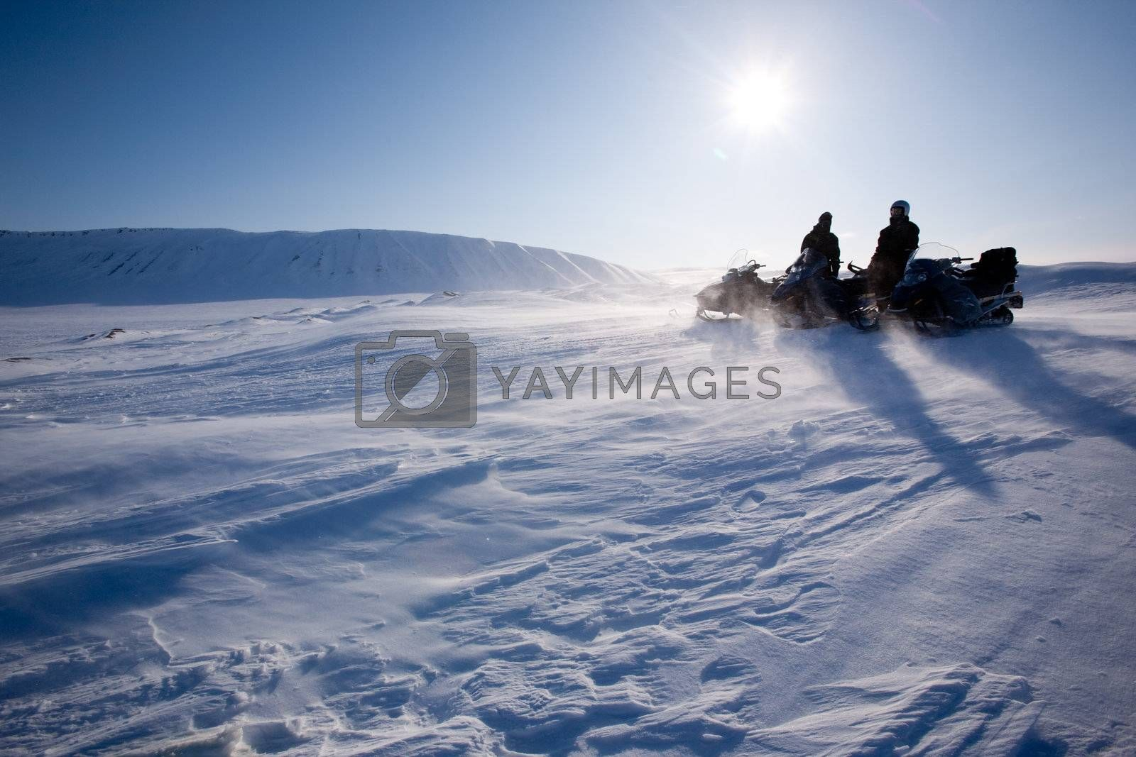 Travelling in a very cold winter landscape with blowing snow