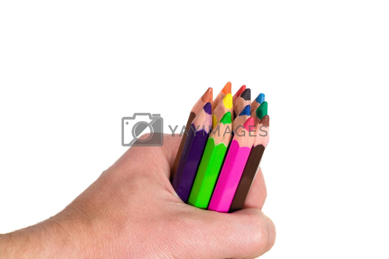 multi colored pencils in hand on white background