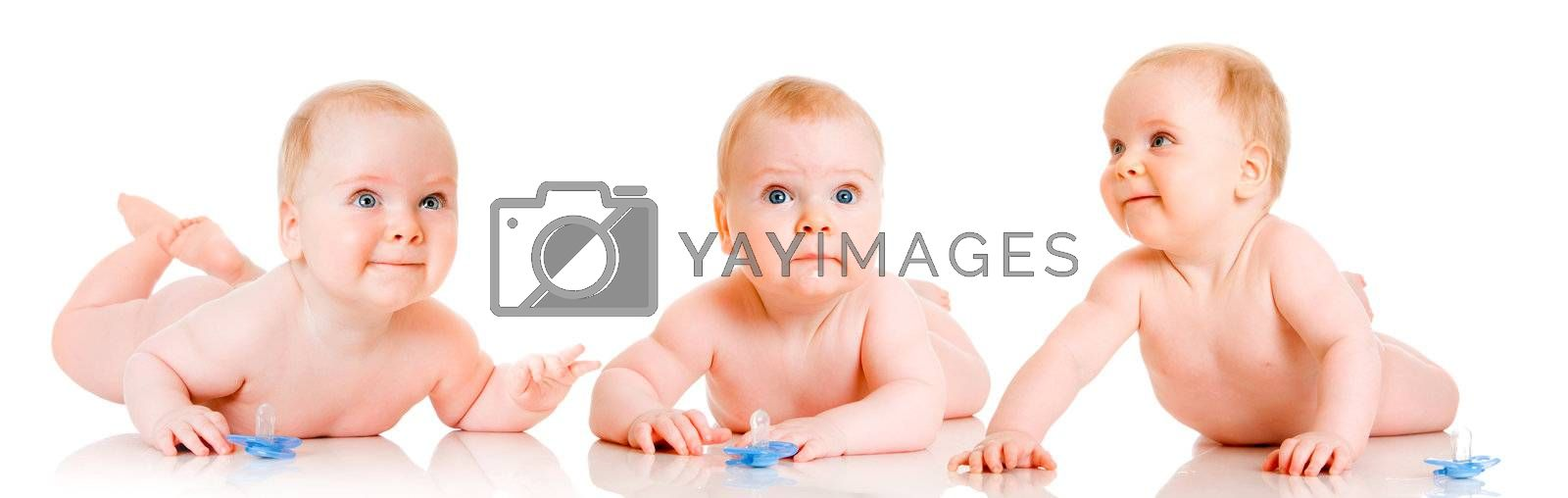 triplet babies on a white background
