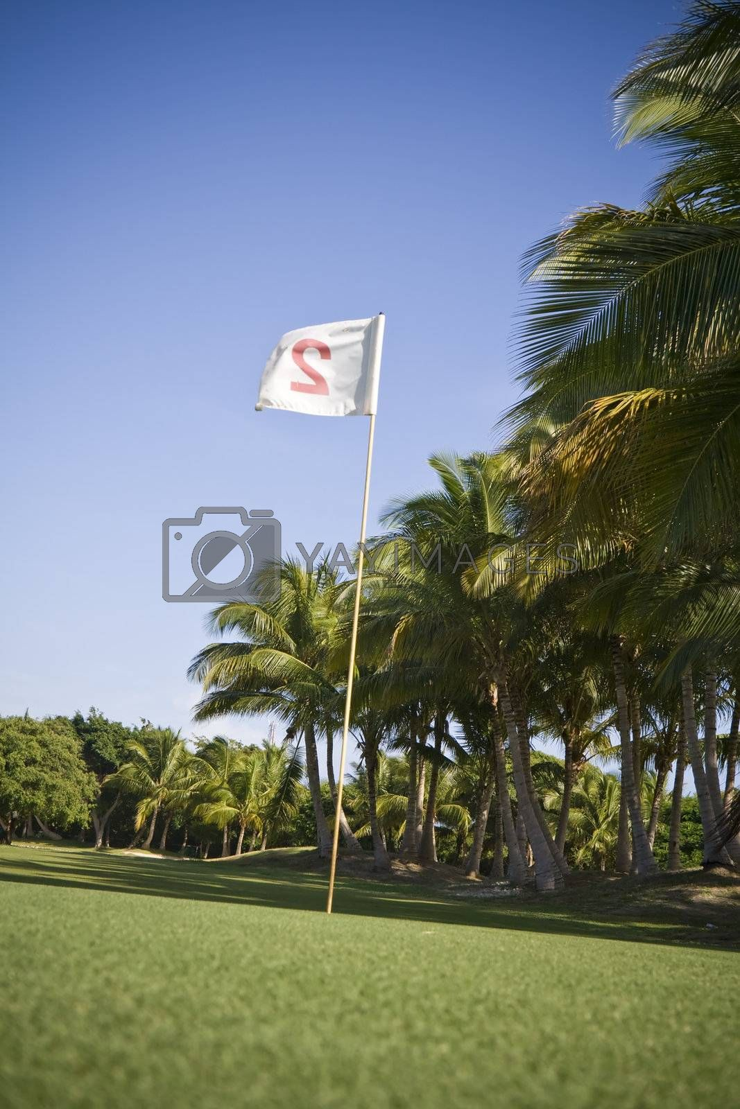 Flag number two in a golf course