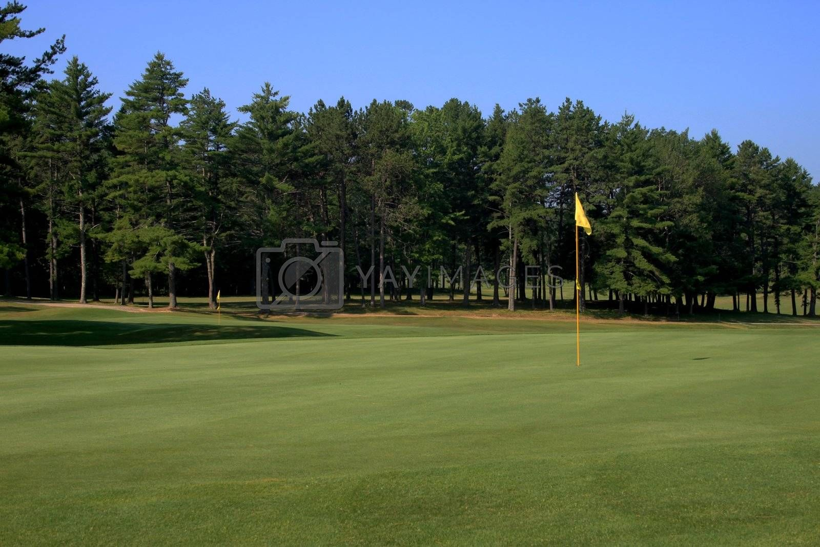 View of a golf green with the flag on the right side