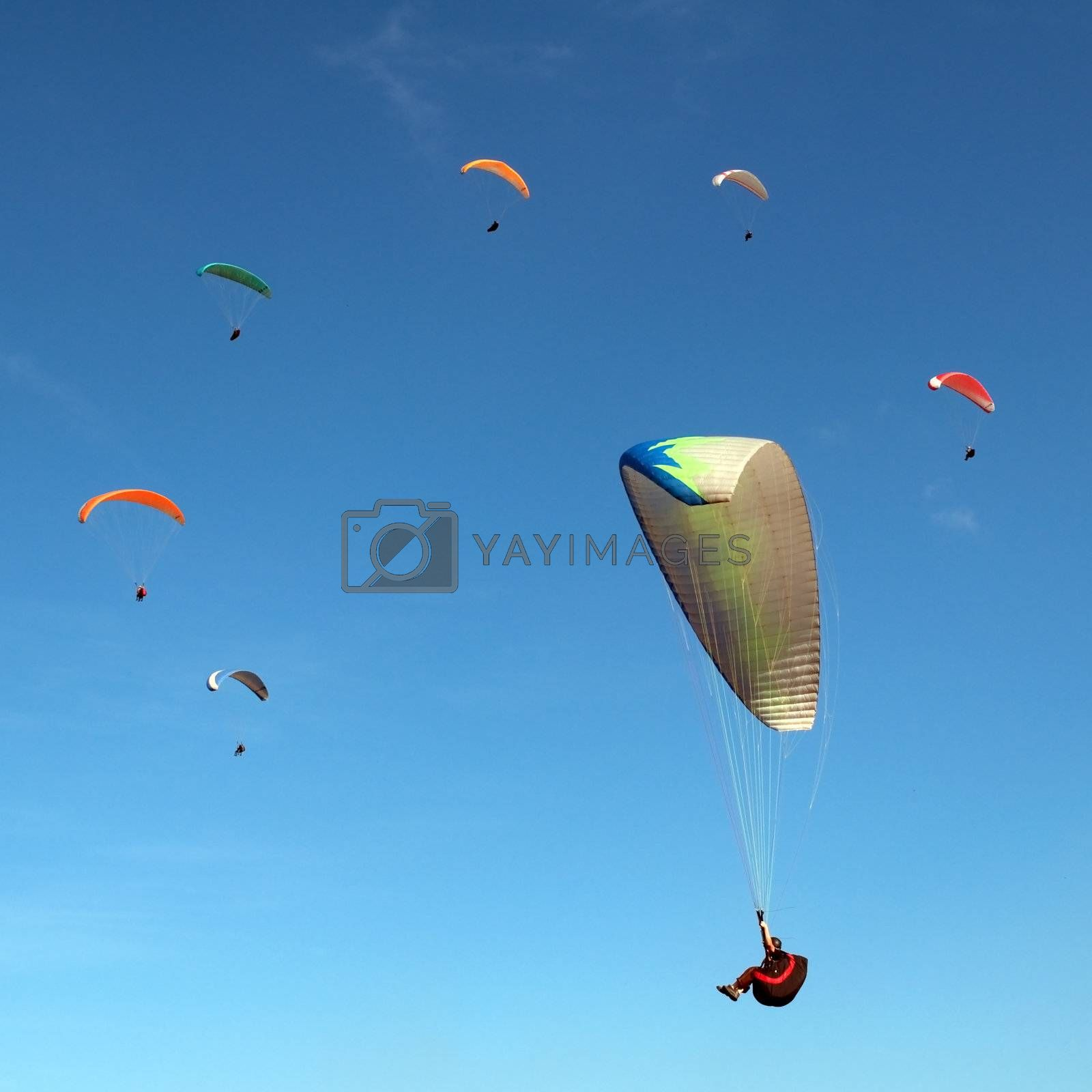 The ring of the paragliders flying in the sky