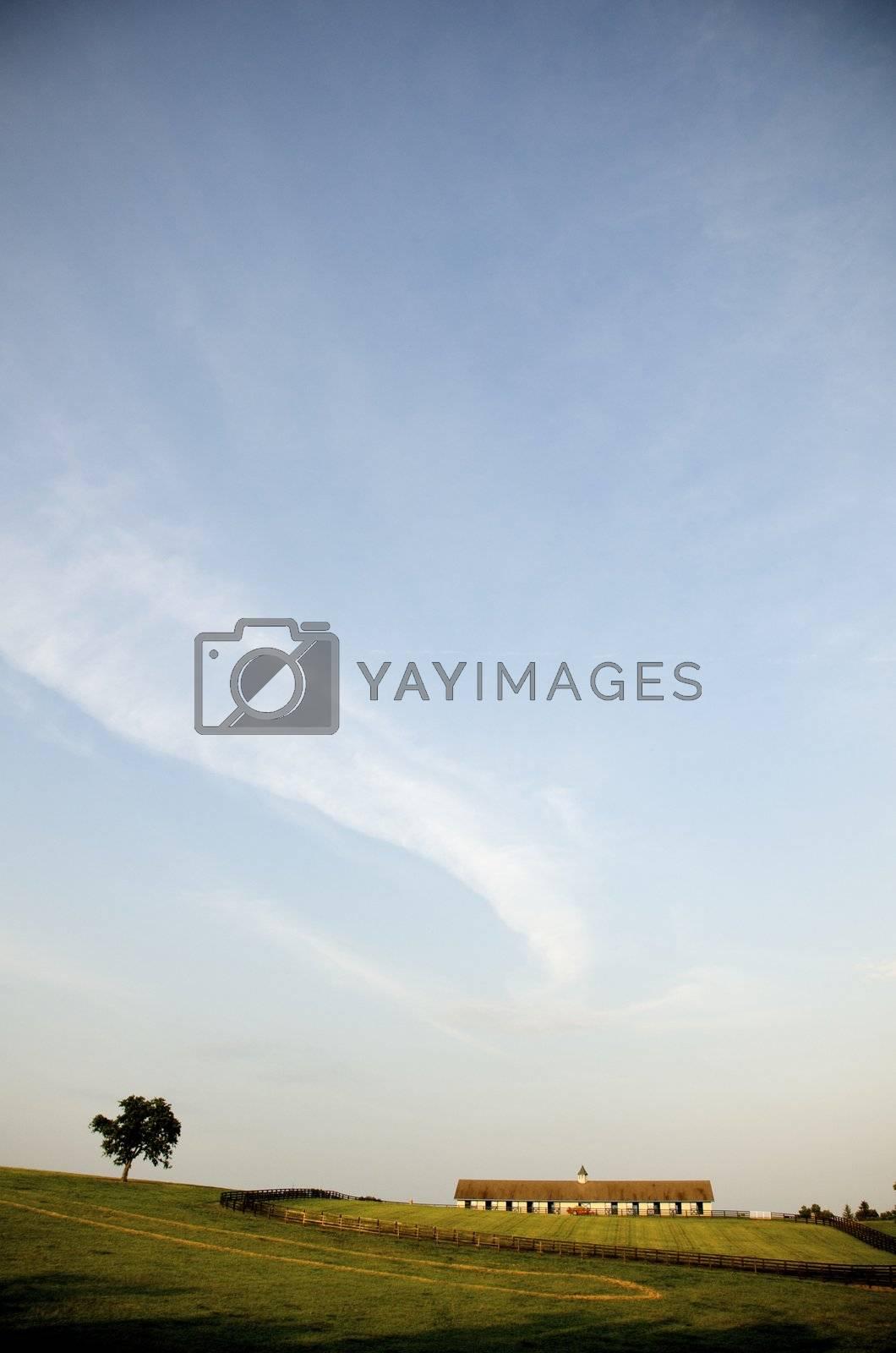Kentucky Hills by jedphoto