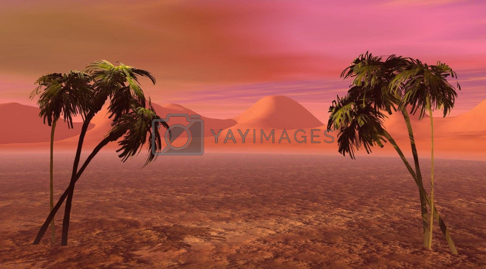 Royalty free image of island pink by mariephotos