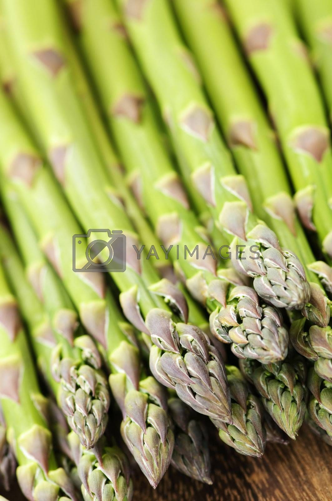 Royalty free image of Asparagus by elenathewise