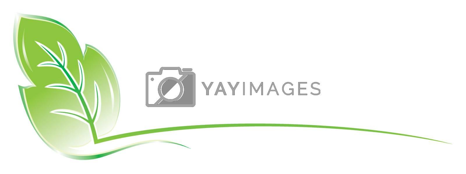 Royalty free image of Leaf design by oxygen64