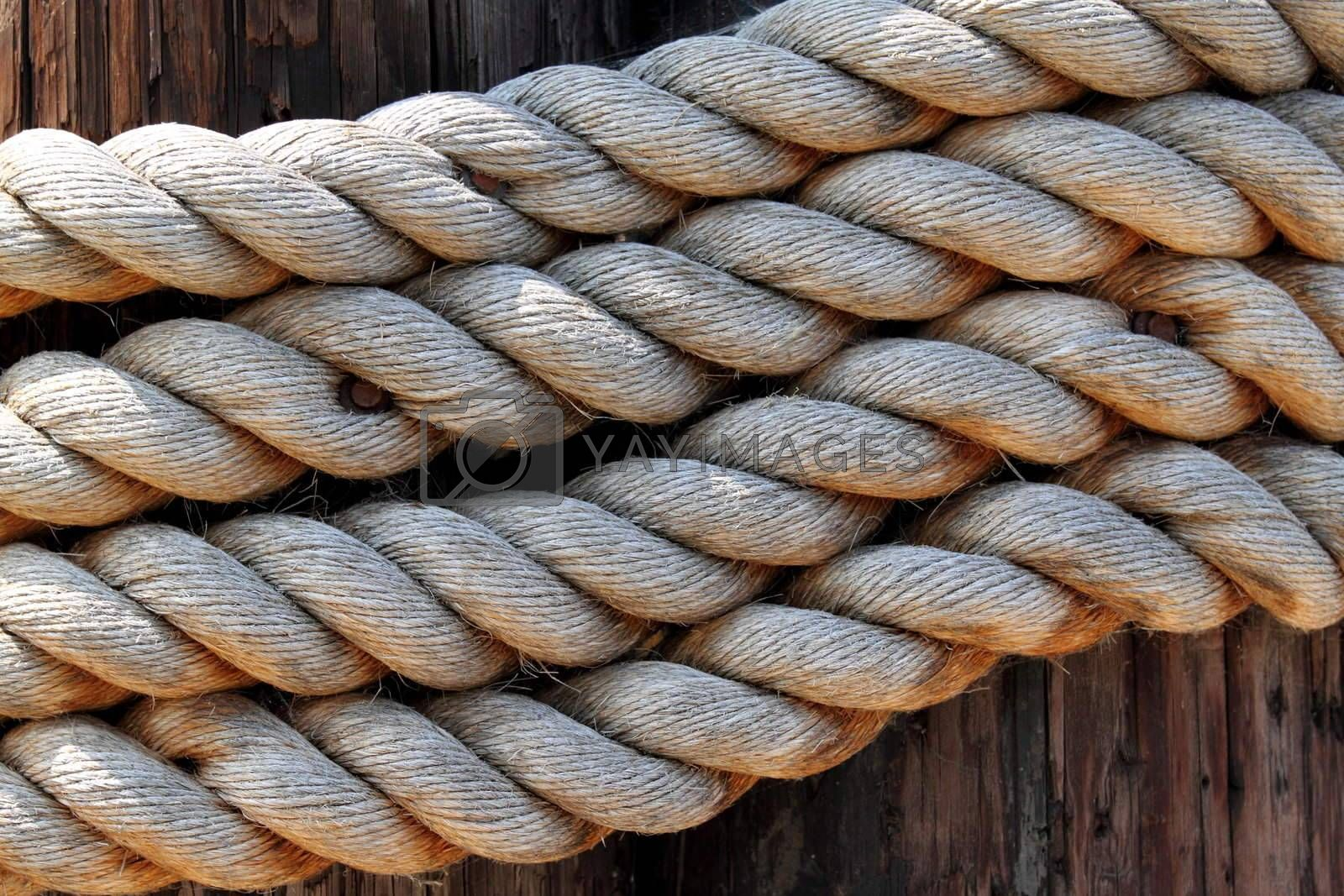 Royalty free image of rope by hlehnerer