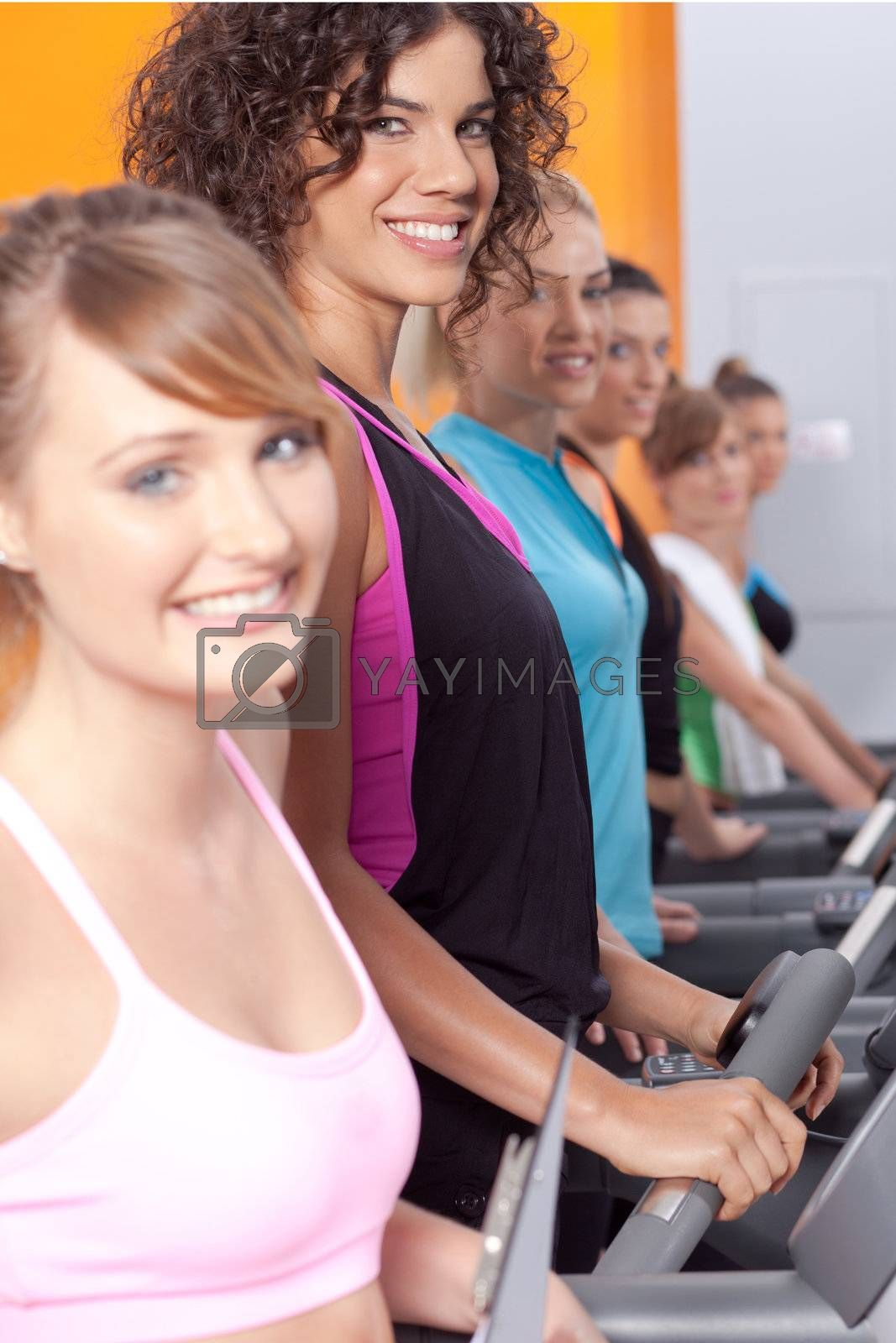 Group of young woman in the gym centre; working out.