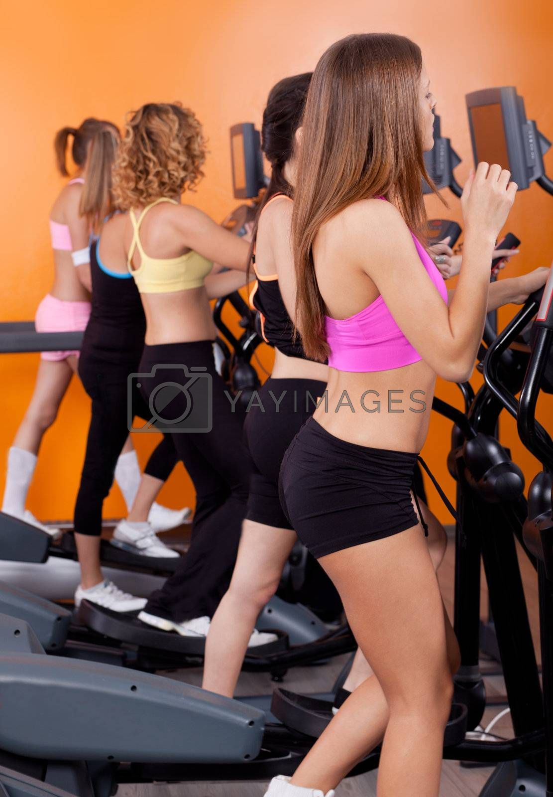 Group of women running on treadmill in gym or fitness club to gain more fitness..