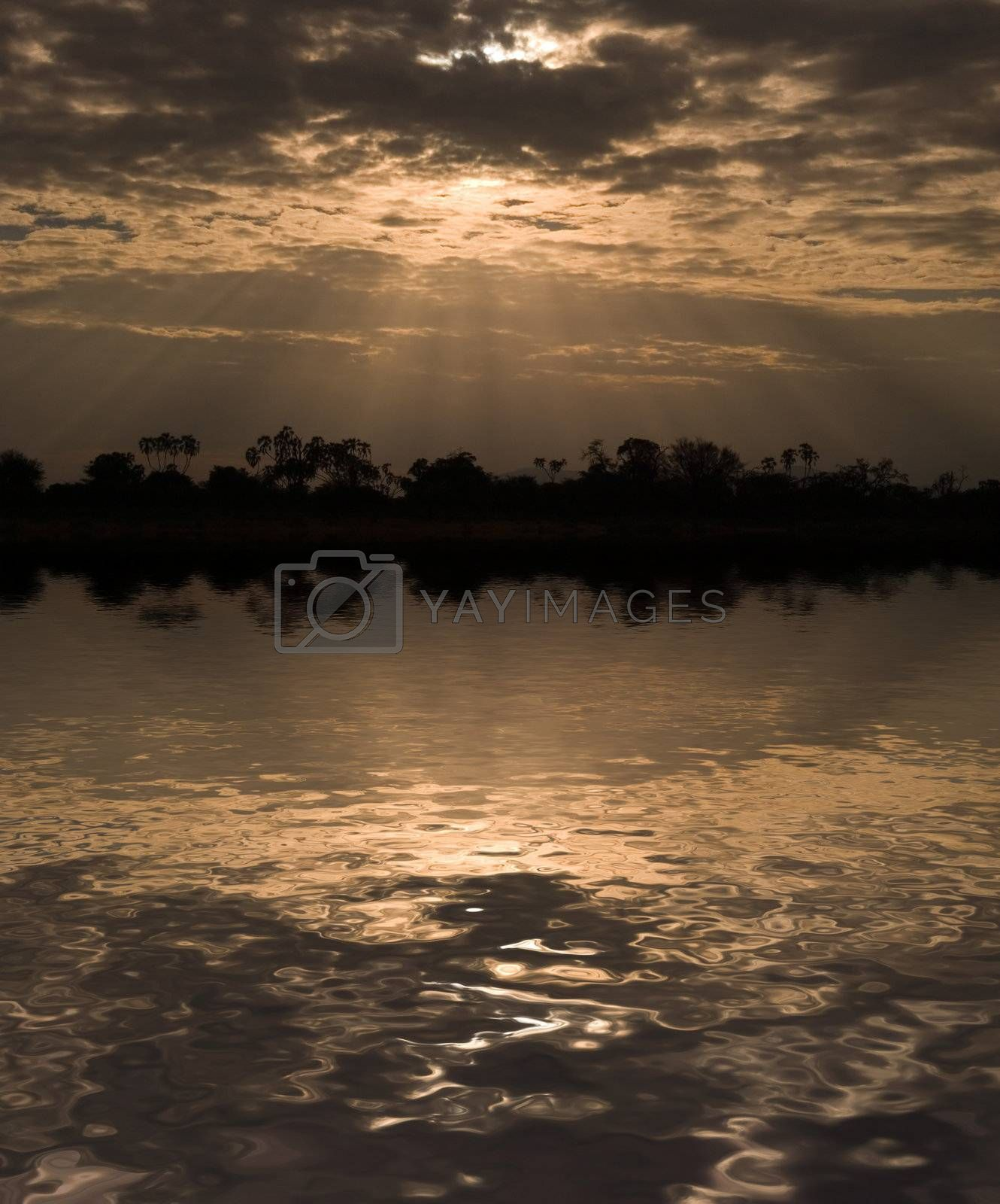 Royalty free image of Sun Rays by ajn
