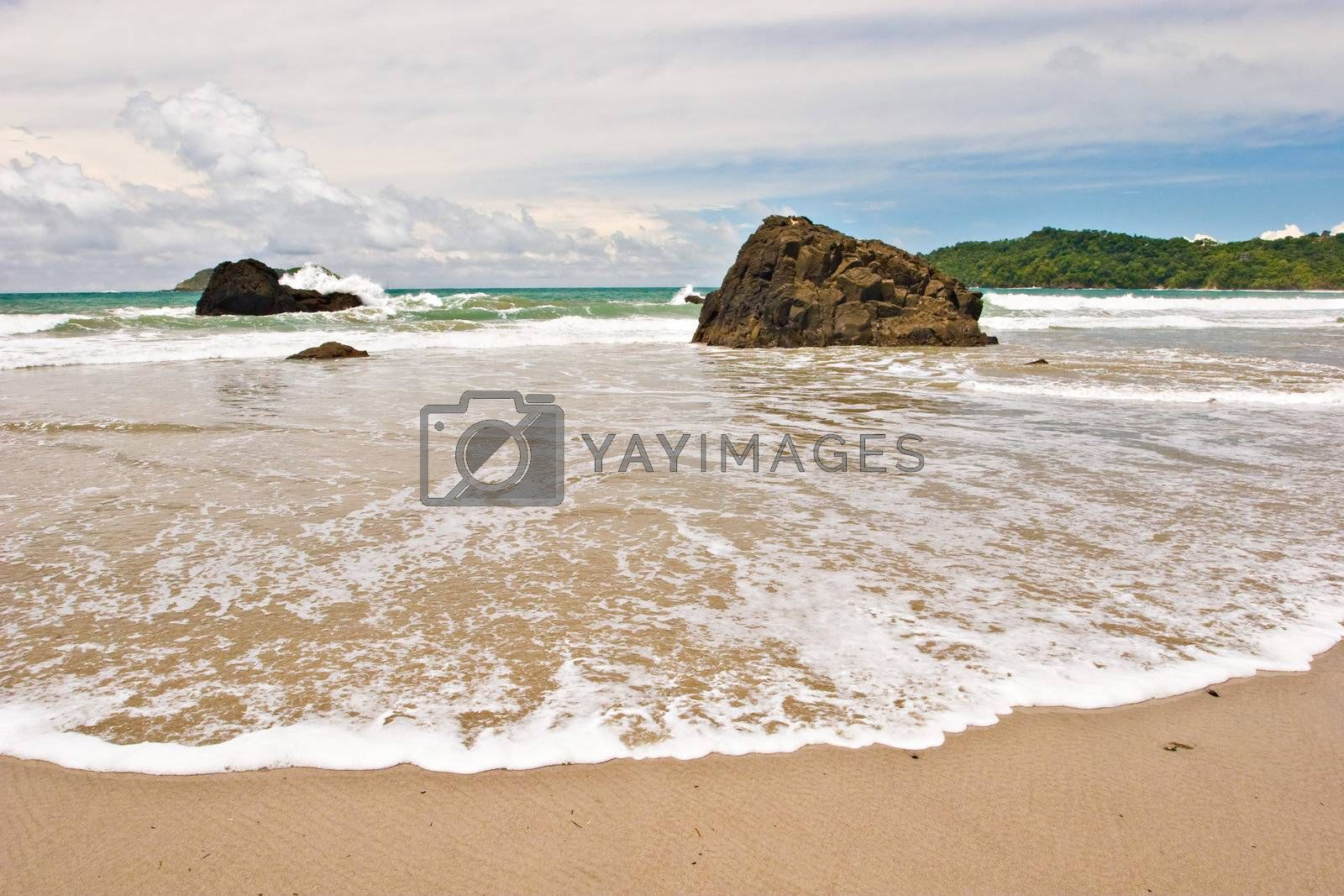 Photo of a wide wave at the beach on the Pacific Coast of Costa Rica.