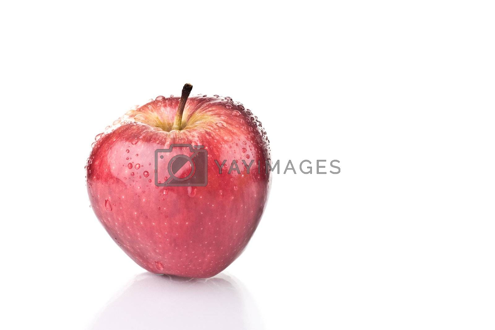 Royalty free image of Red Apple by ajn
