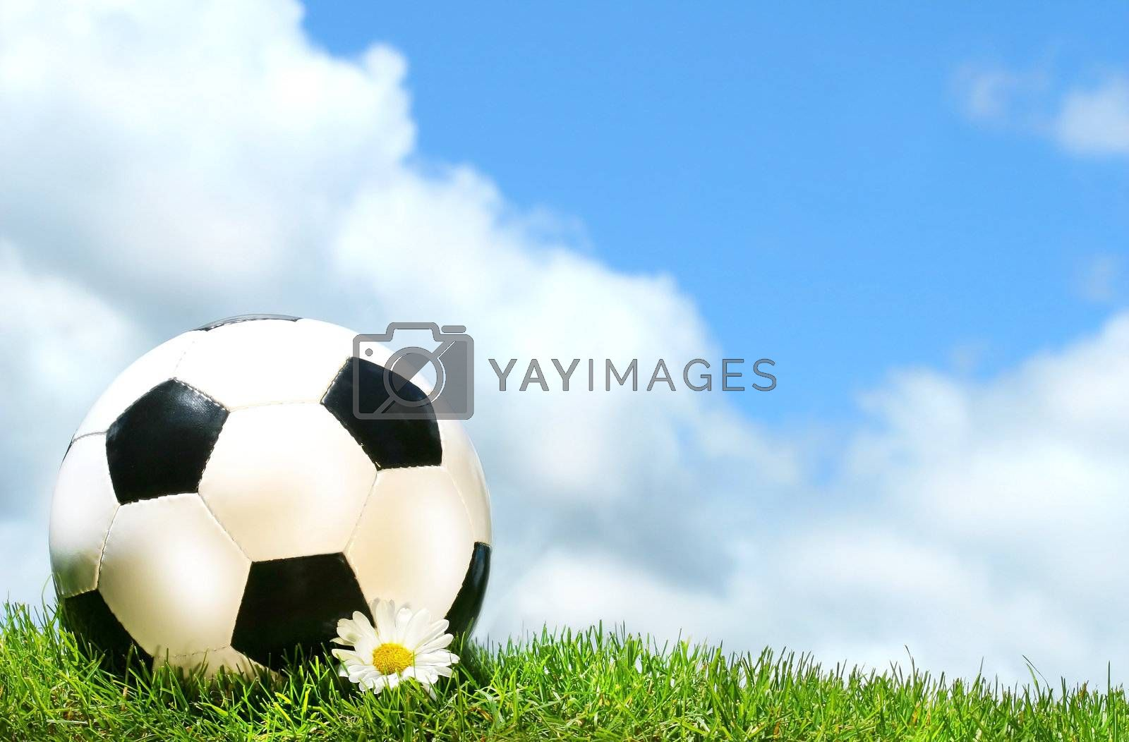 Soccerball with daisy against a blue sky by Sandralise