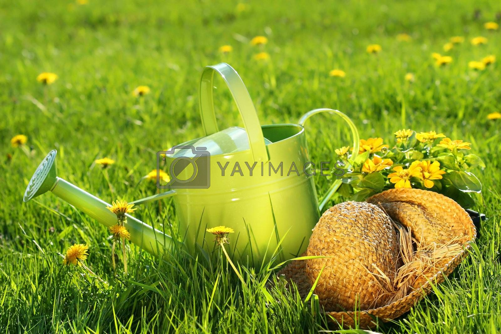 Watering can in the grass by Sandralise