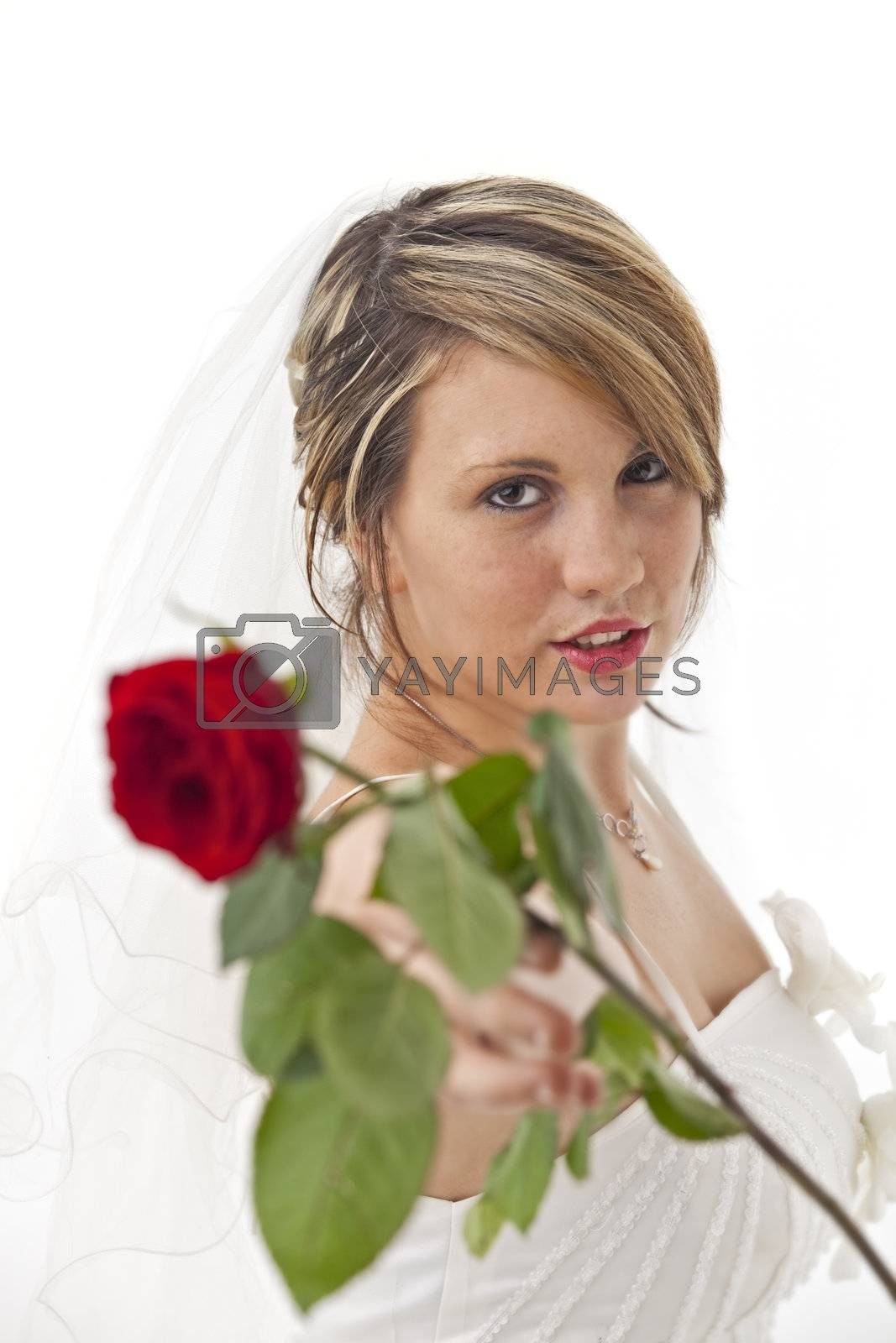 beautiful young bride in a wedding dress with a veil holding a rose