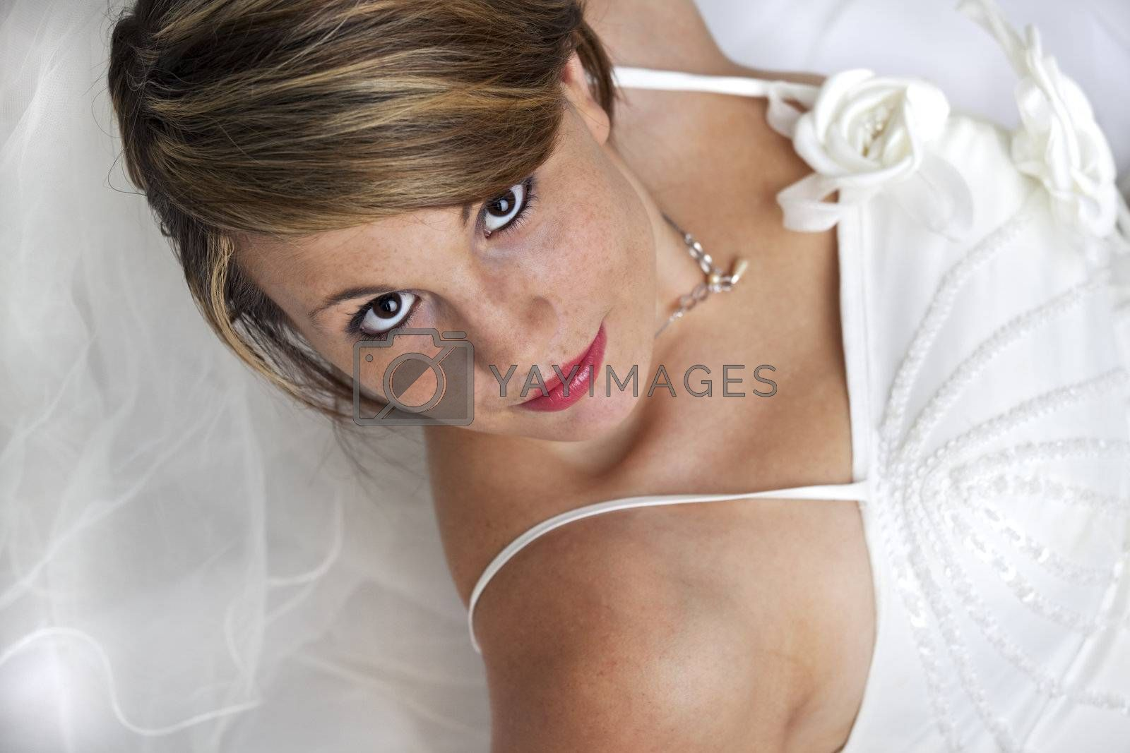 beautiful young bride in a wedding dress with a veil