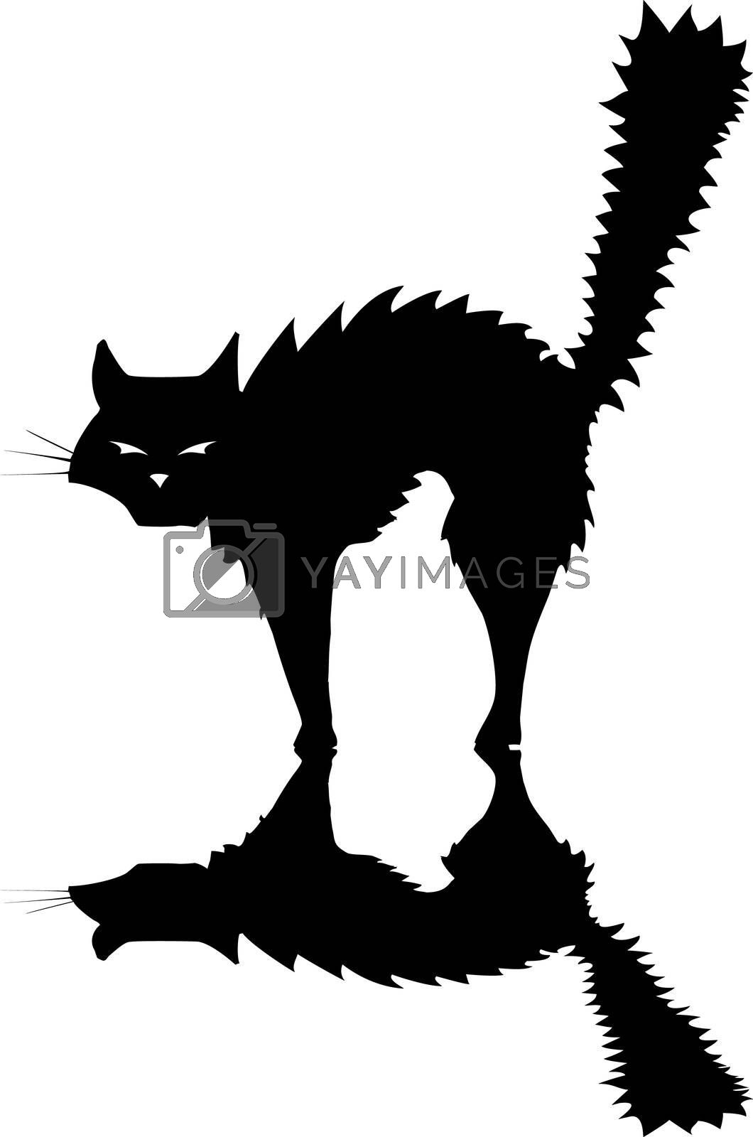 Halloween black cat raising its fur to hiss and look scary.