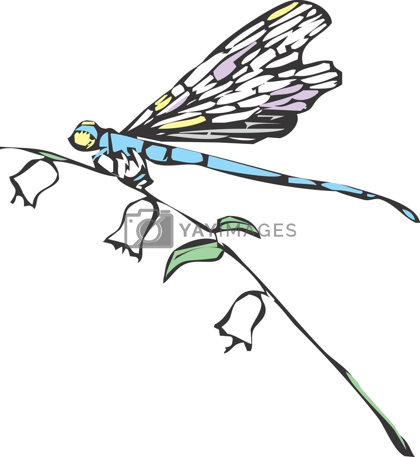 A dragonfly or damselfly on a flower stem.