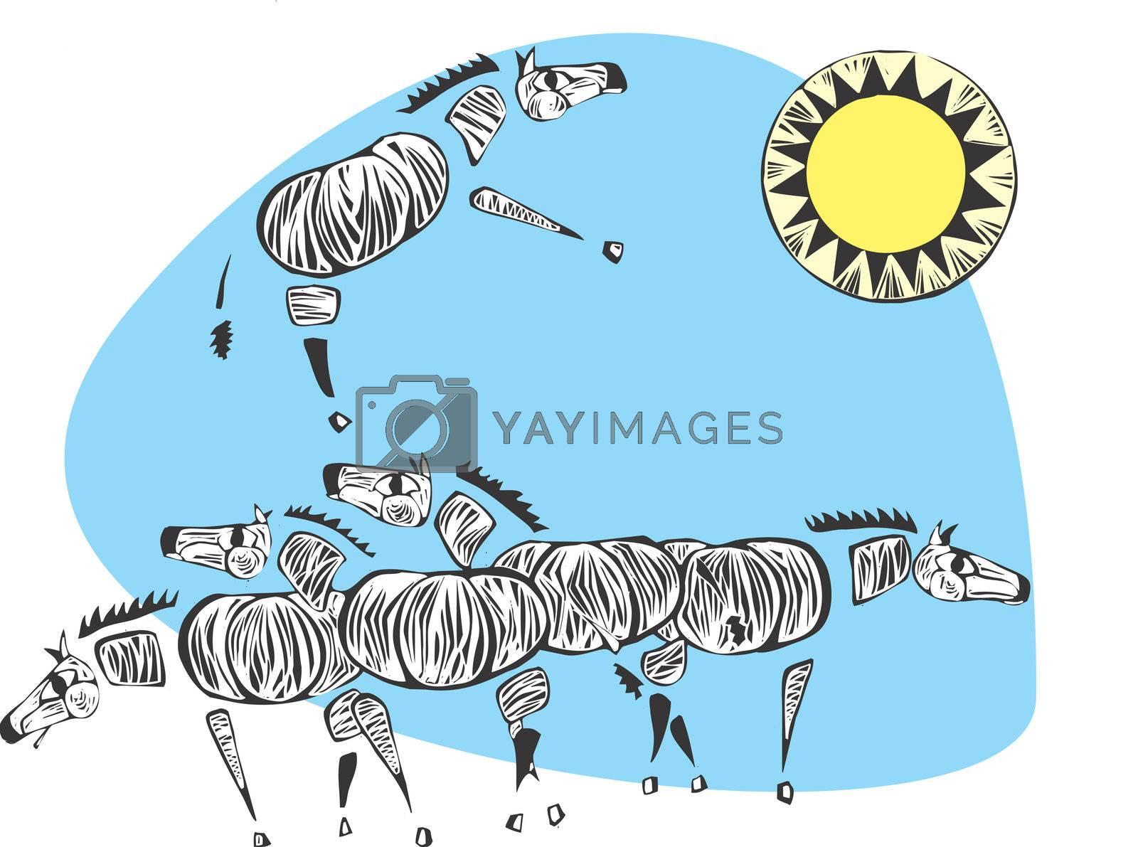 A herd of zebras beneath the african sun.