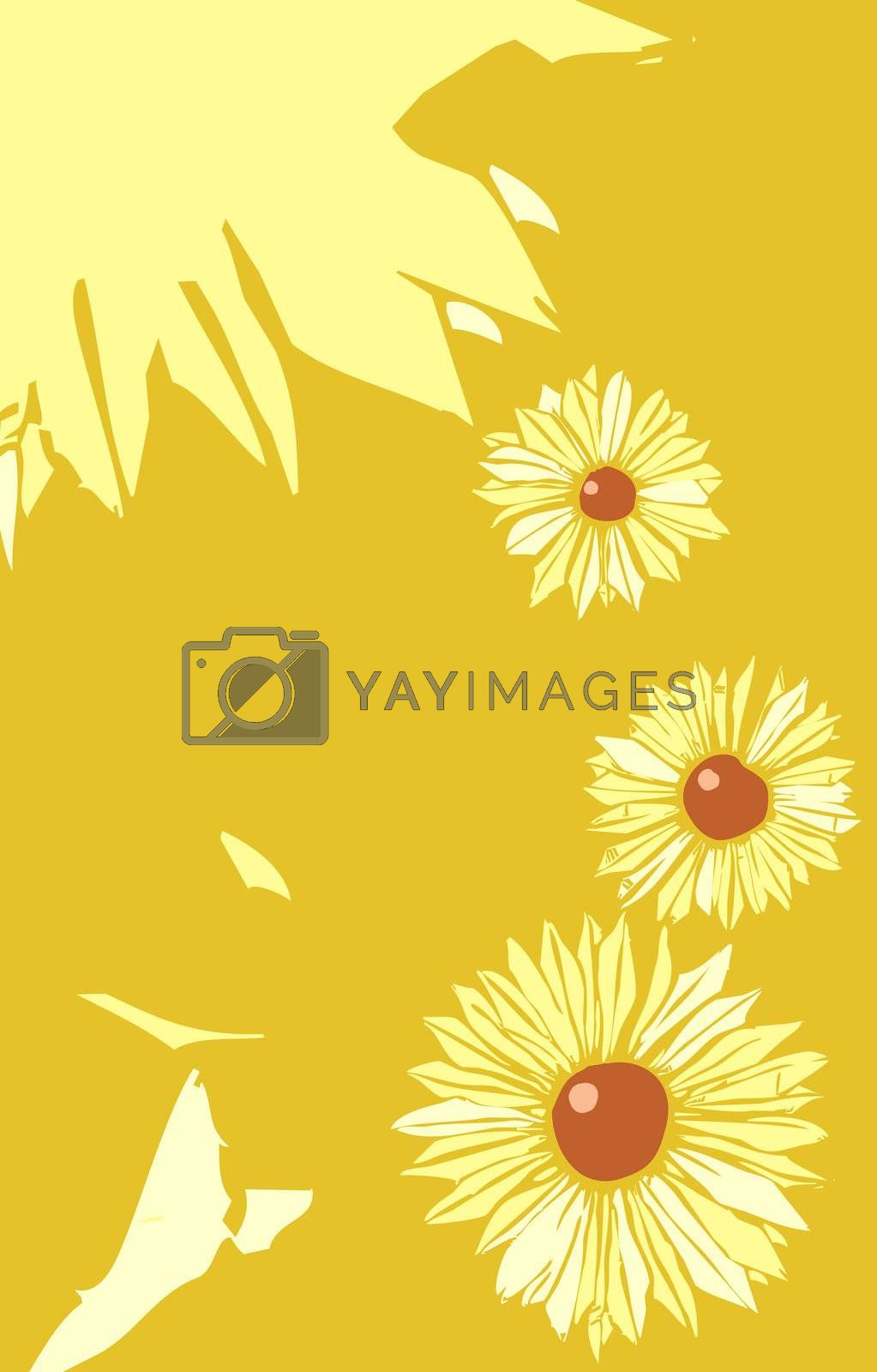 Black Eyed Susan flowers in a tabloid layout.