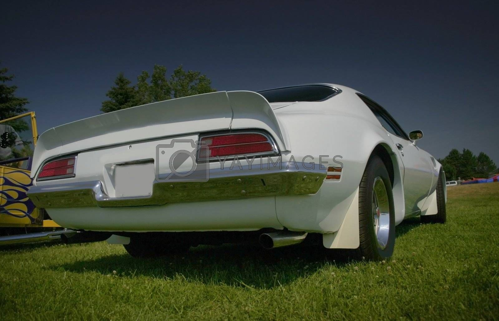 White muscle car rear end -wide angle shot