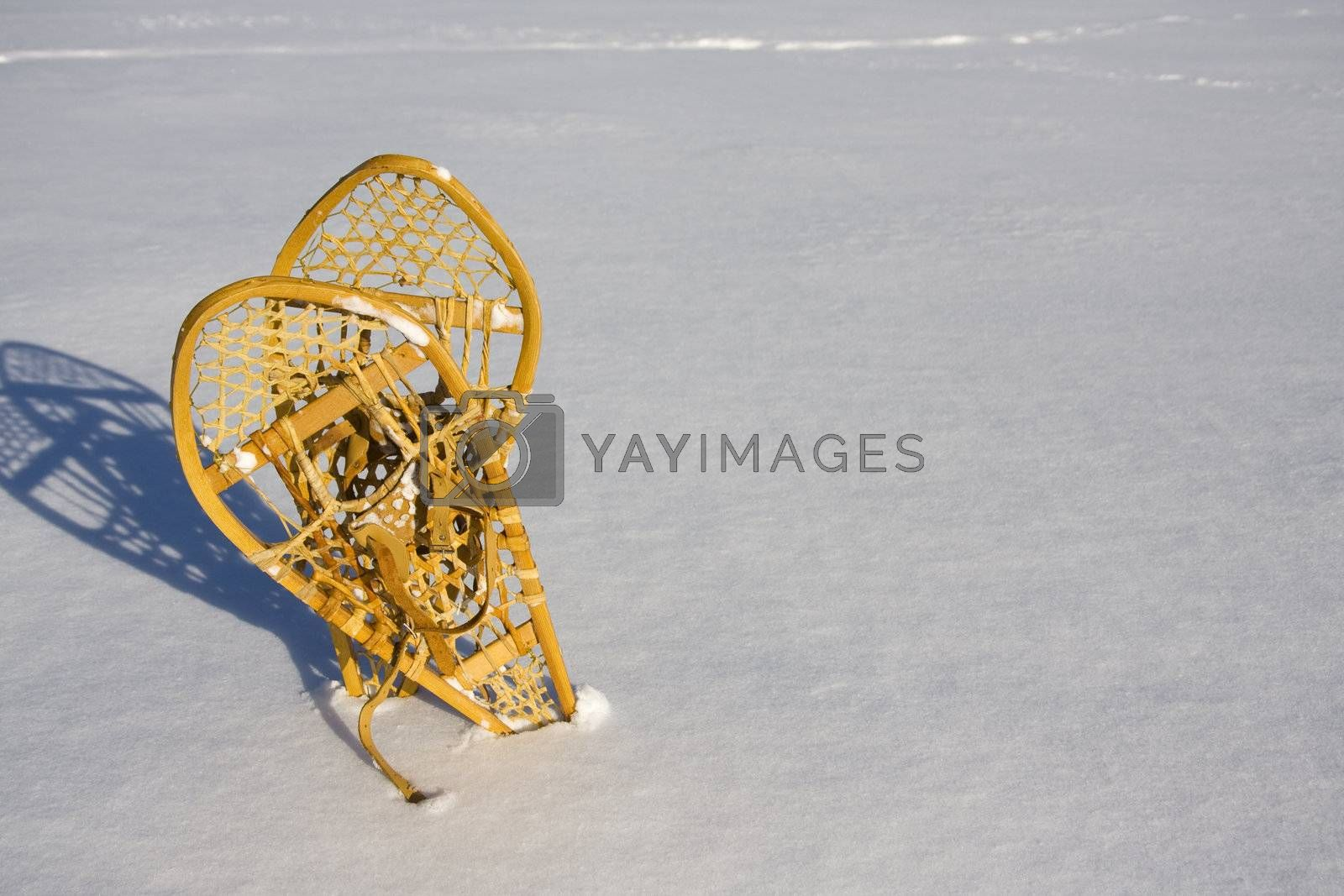 Two snowshoes standing in the snow