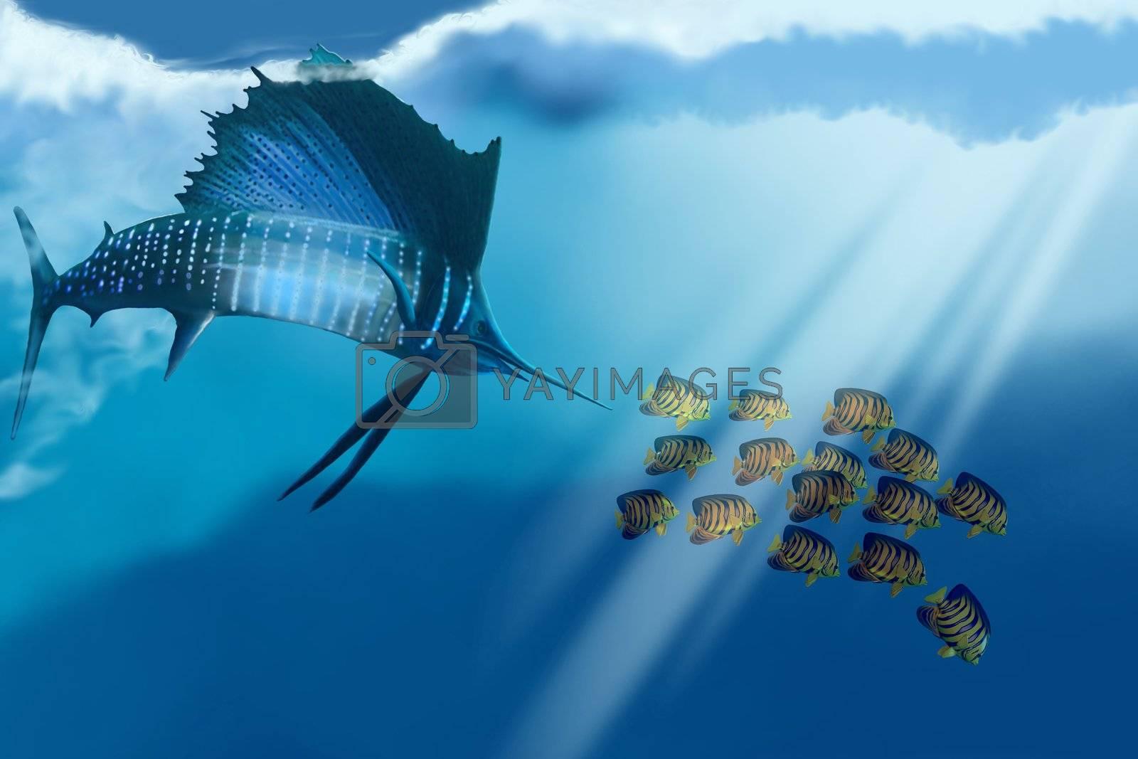 A sailfish swims after its prey.