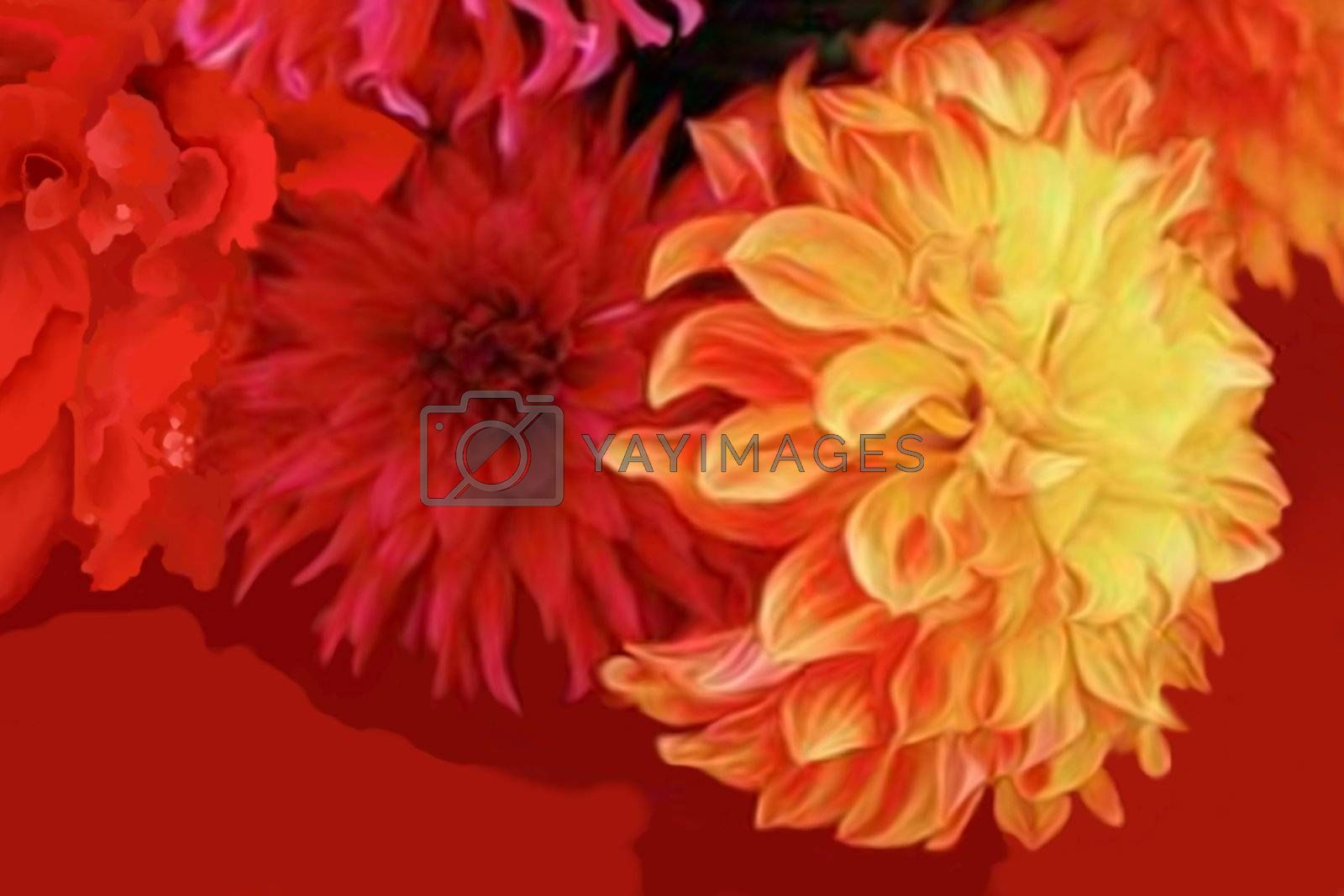 Abstract bouquet of dahlia flowers.