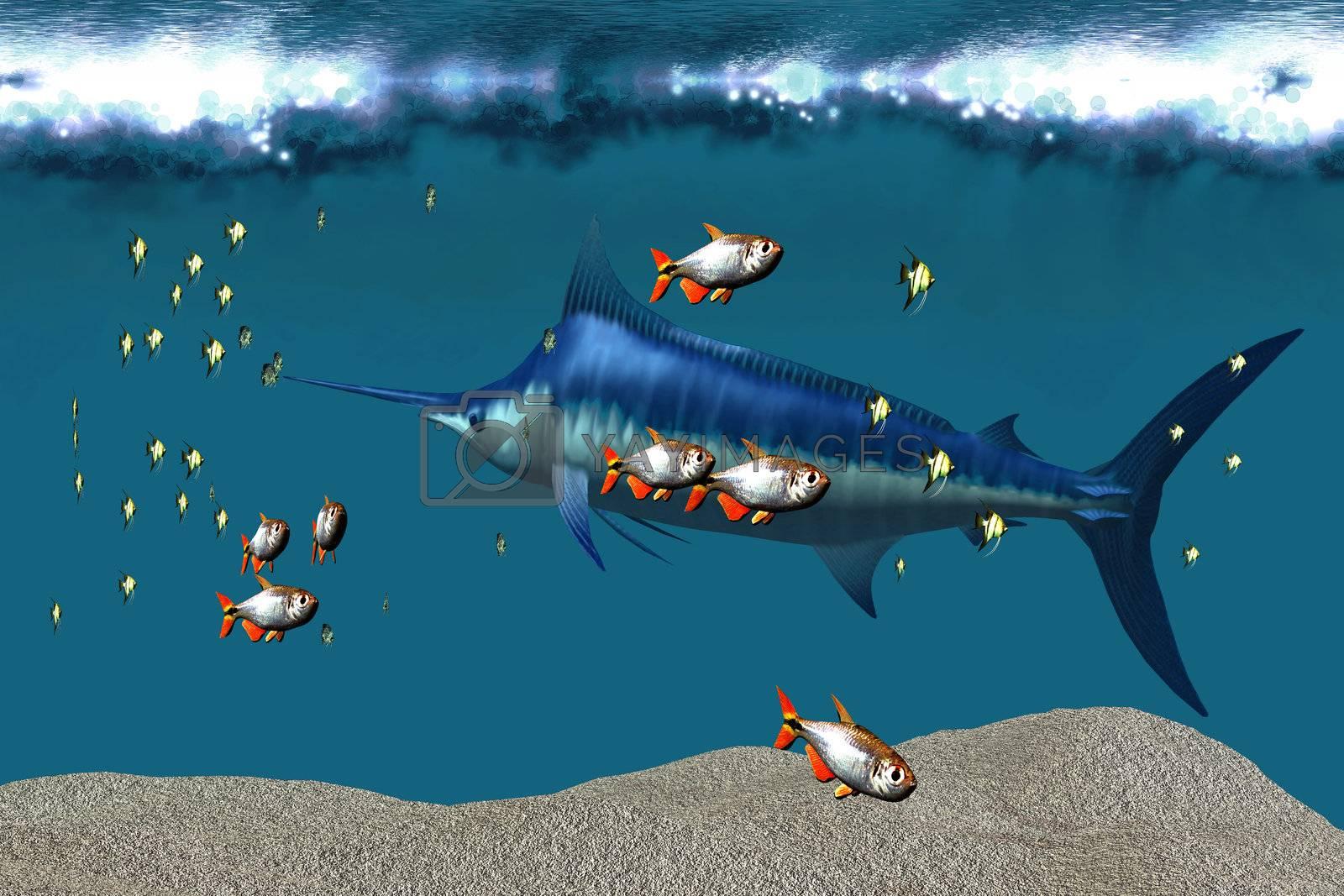 Small fish accompany a blue marlin in an ocean world habitat.