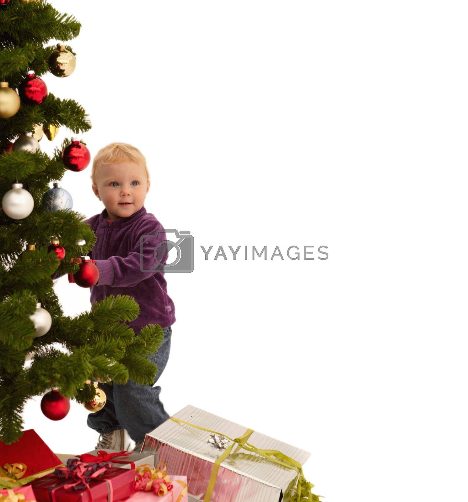 Royalty free image of Christmas - Child putting decorations on tree by FreedomImage