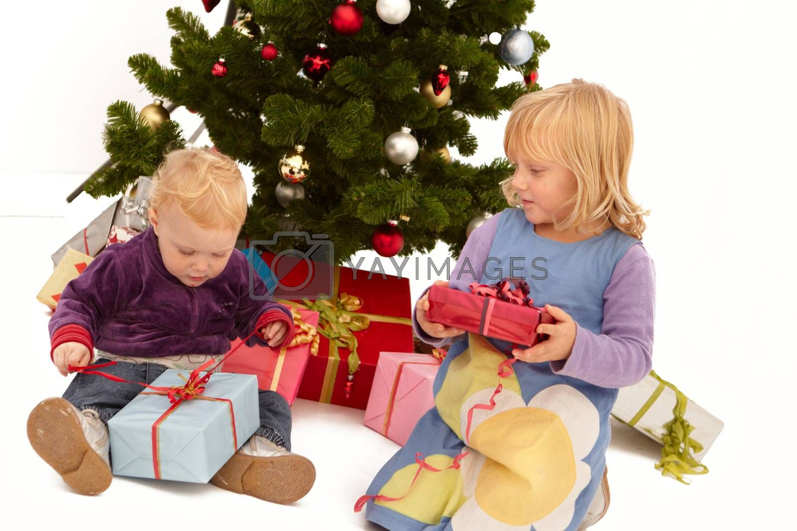 Royalty free image of Christmas - Kids opening presents under tree by FreedomImage