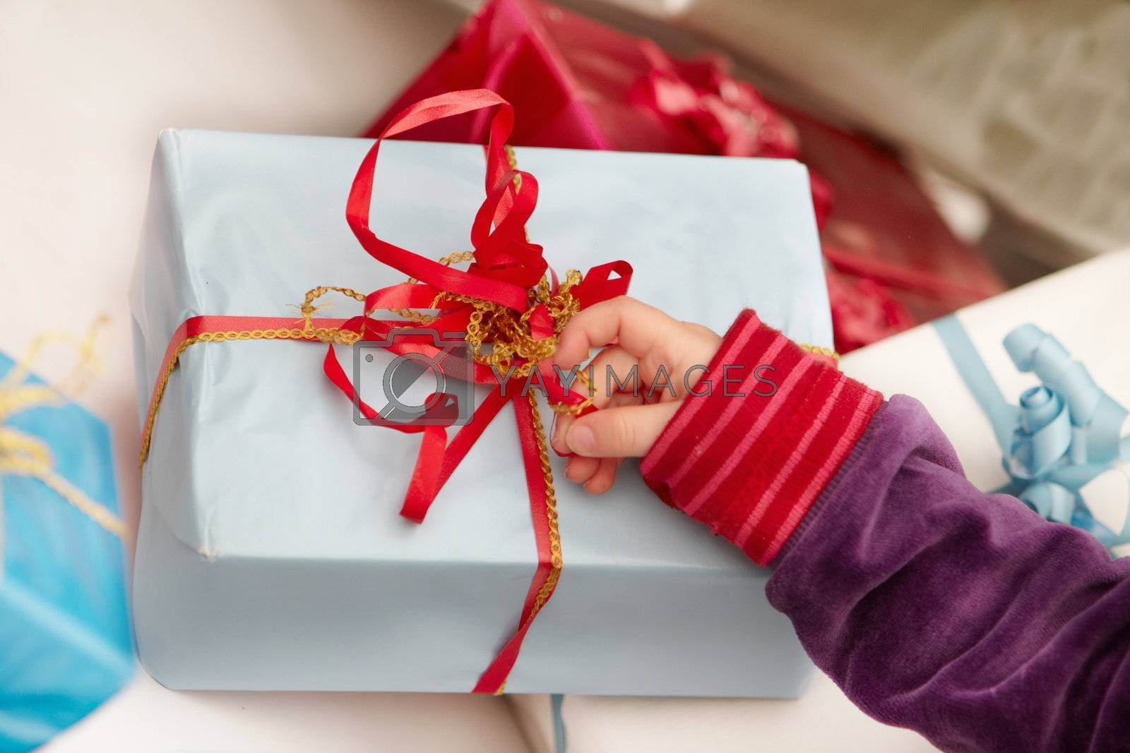 Royalty free image of Christmas time -  opening of presents by FreedomImage