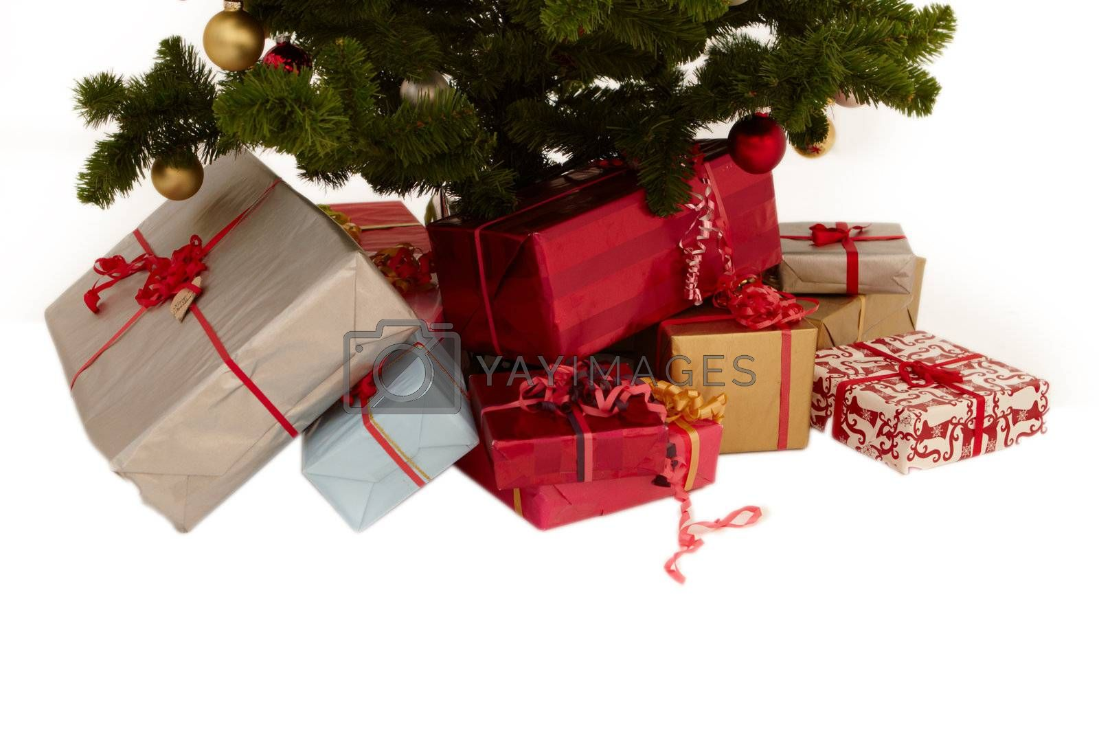 Royalty free image of Christmas tree - presents under a tree by FreedomImage