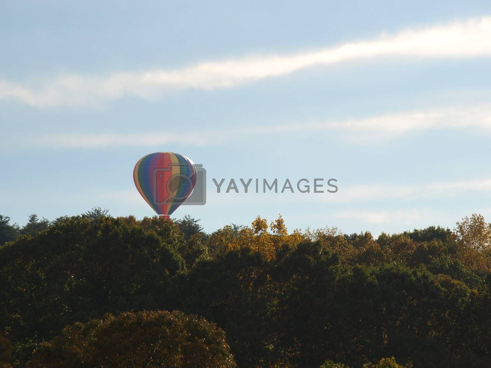 Over the trees. by northwoodsphoto