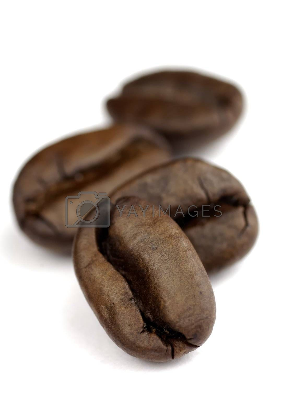 small row of coffee beans with SDOF on white background
