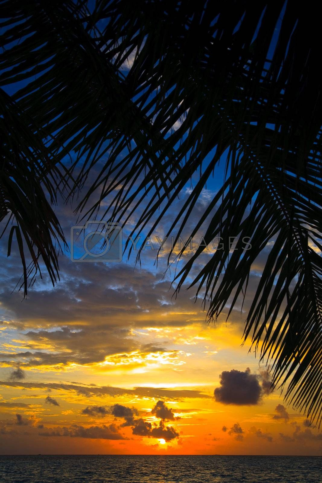 Maldivian Sunset image with nice color