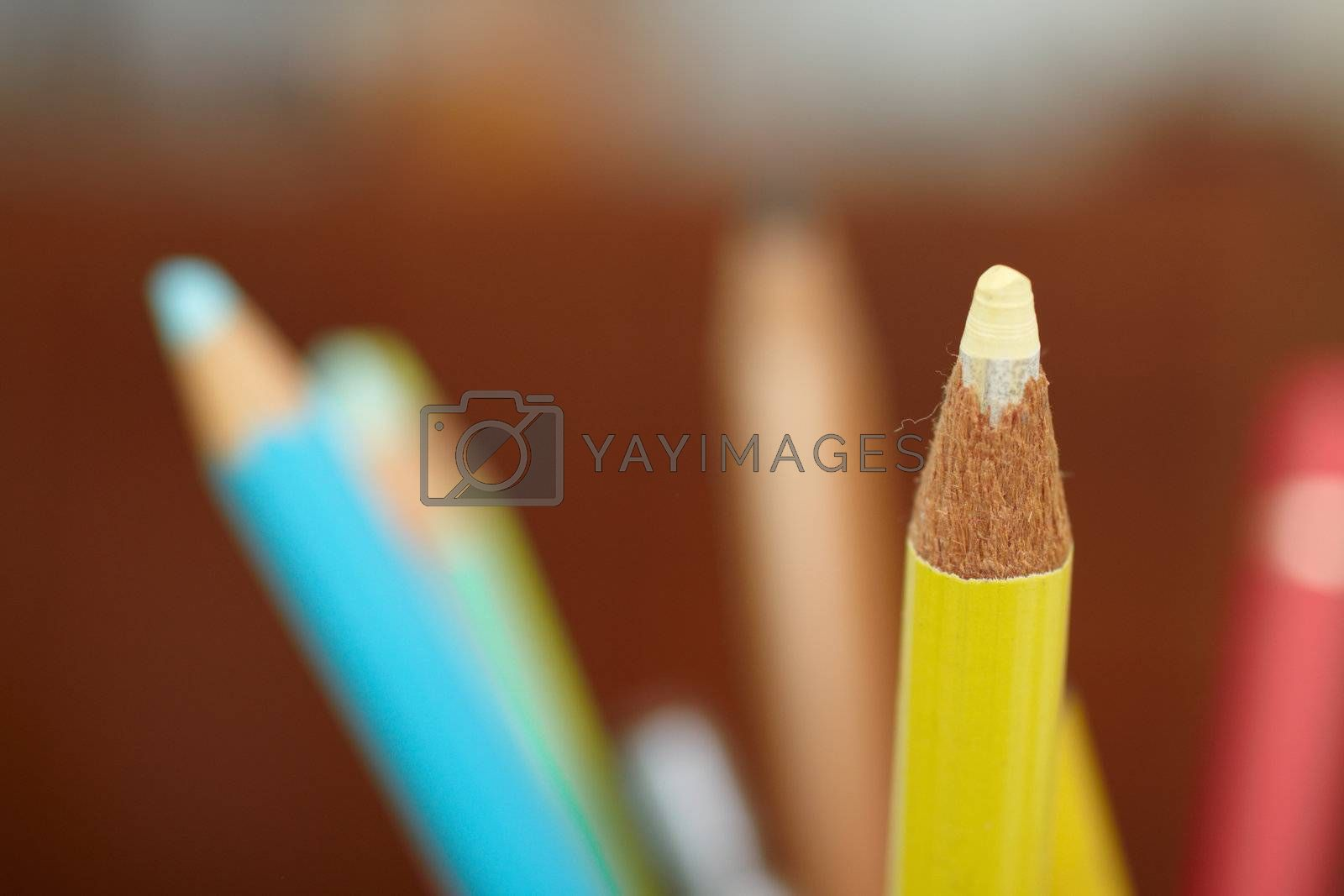 Royalty free image of Education - sharpened colourful pencil with copy space by FreedomImage