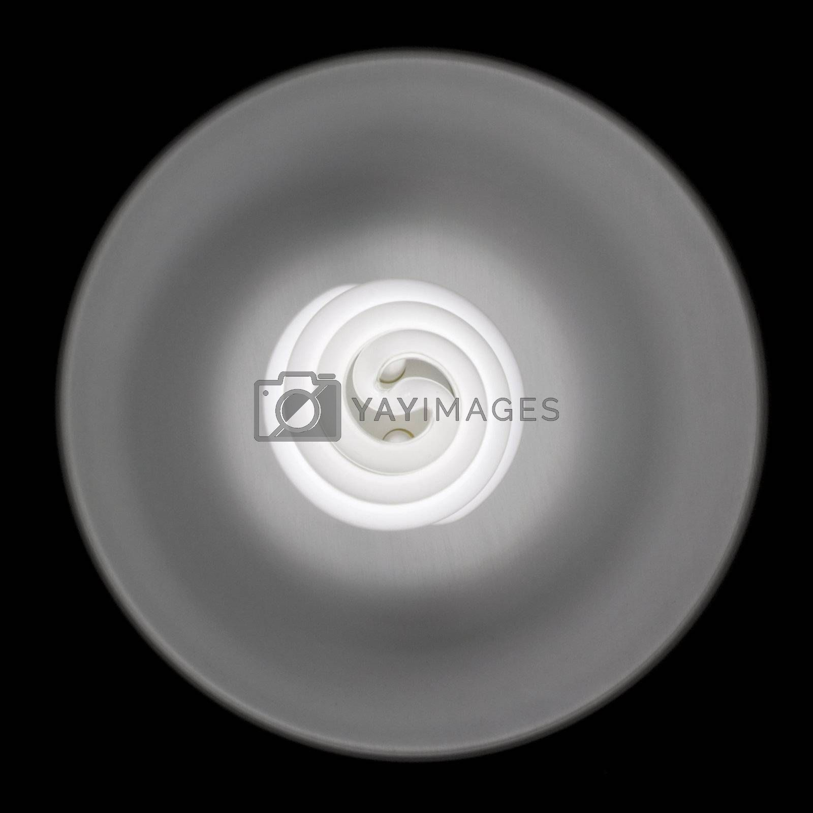 compact fluorescent daylight balanced  bulb with a reflector