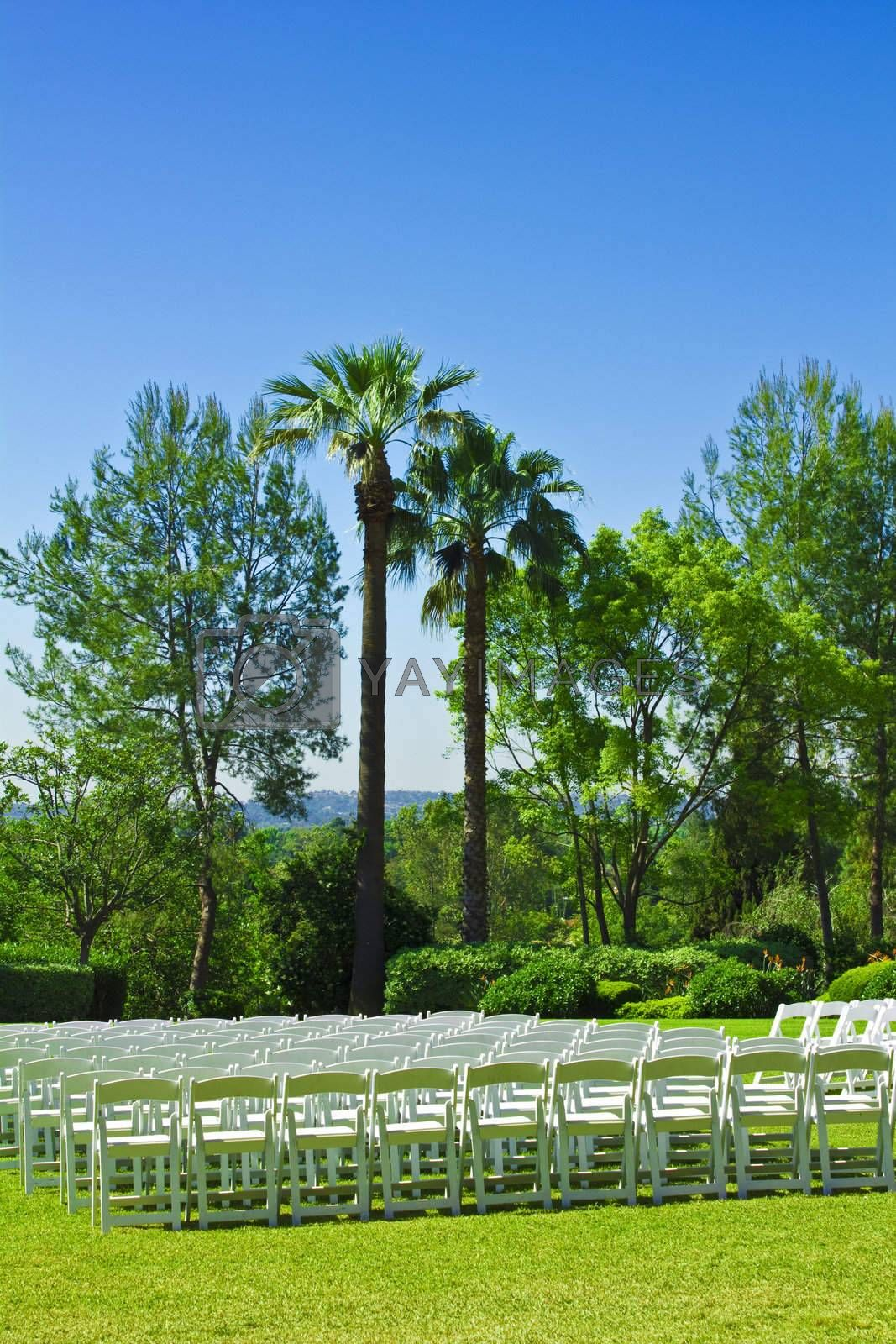 An image of a rows of white chairs in a park setting.