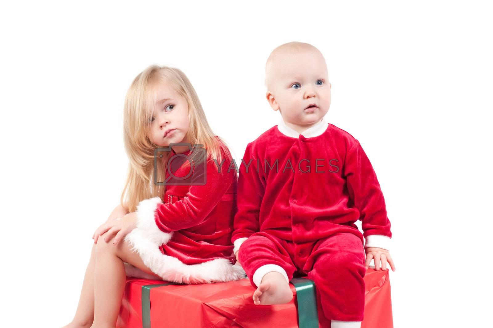 Studio shot of cute little christmas babies