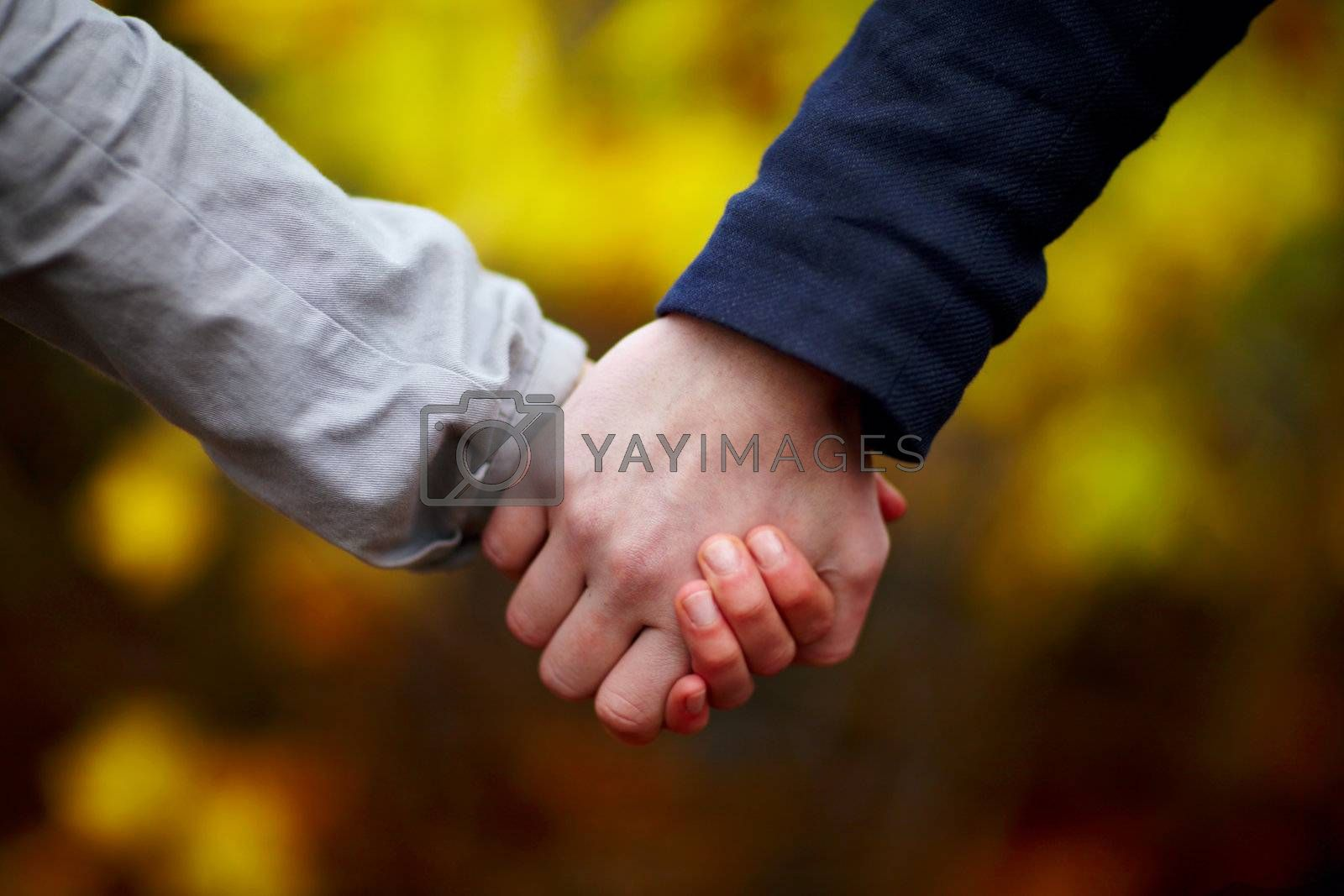 Royalty free image of Love - Couple holding hands in autumn by FreedomImage