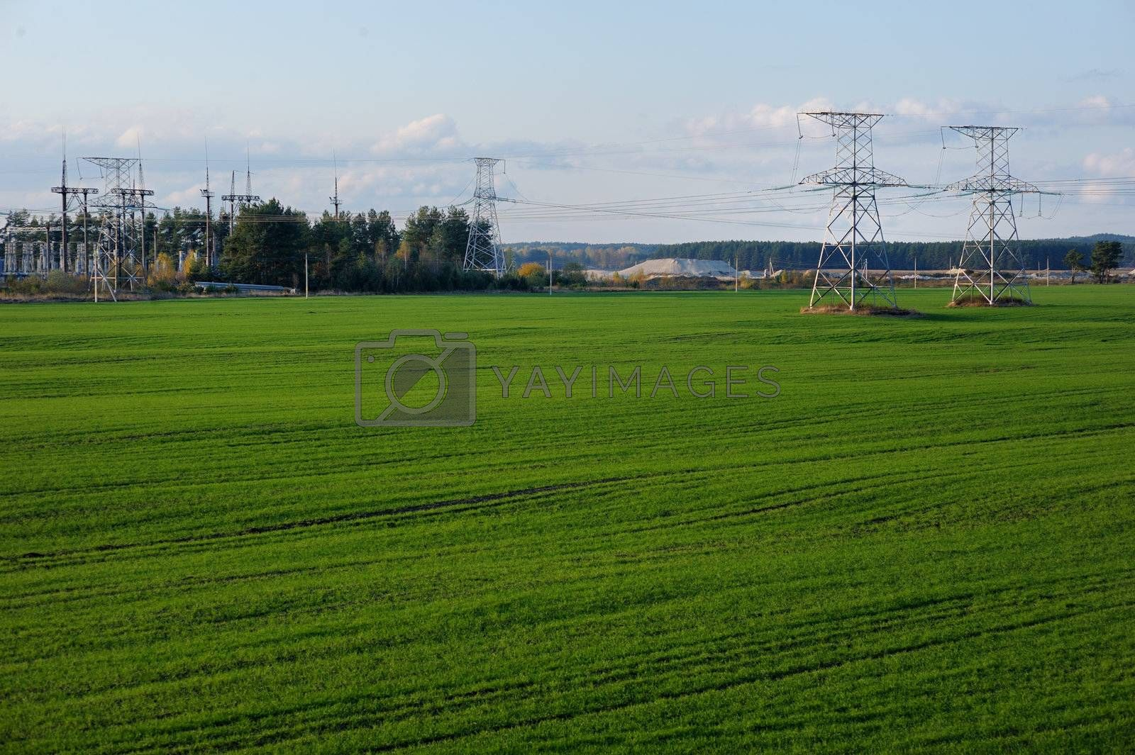 Countryside lanscape with power lines and grass field by maximkabb