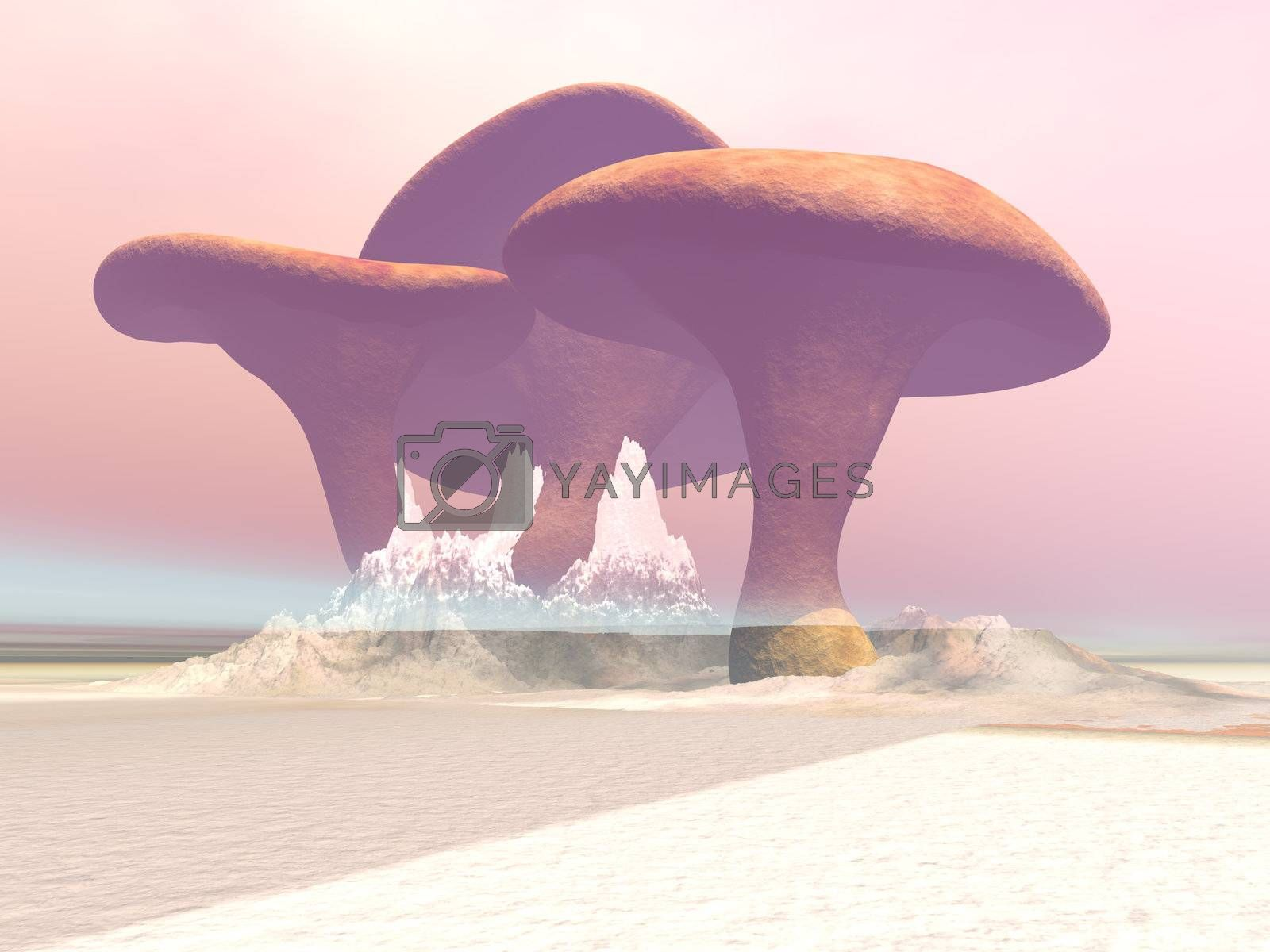 Royalty free image of GIANT MUSHROOMS by Catmando