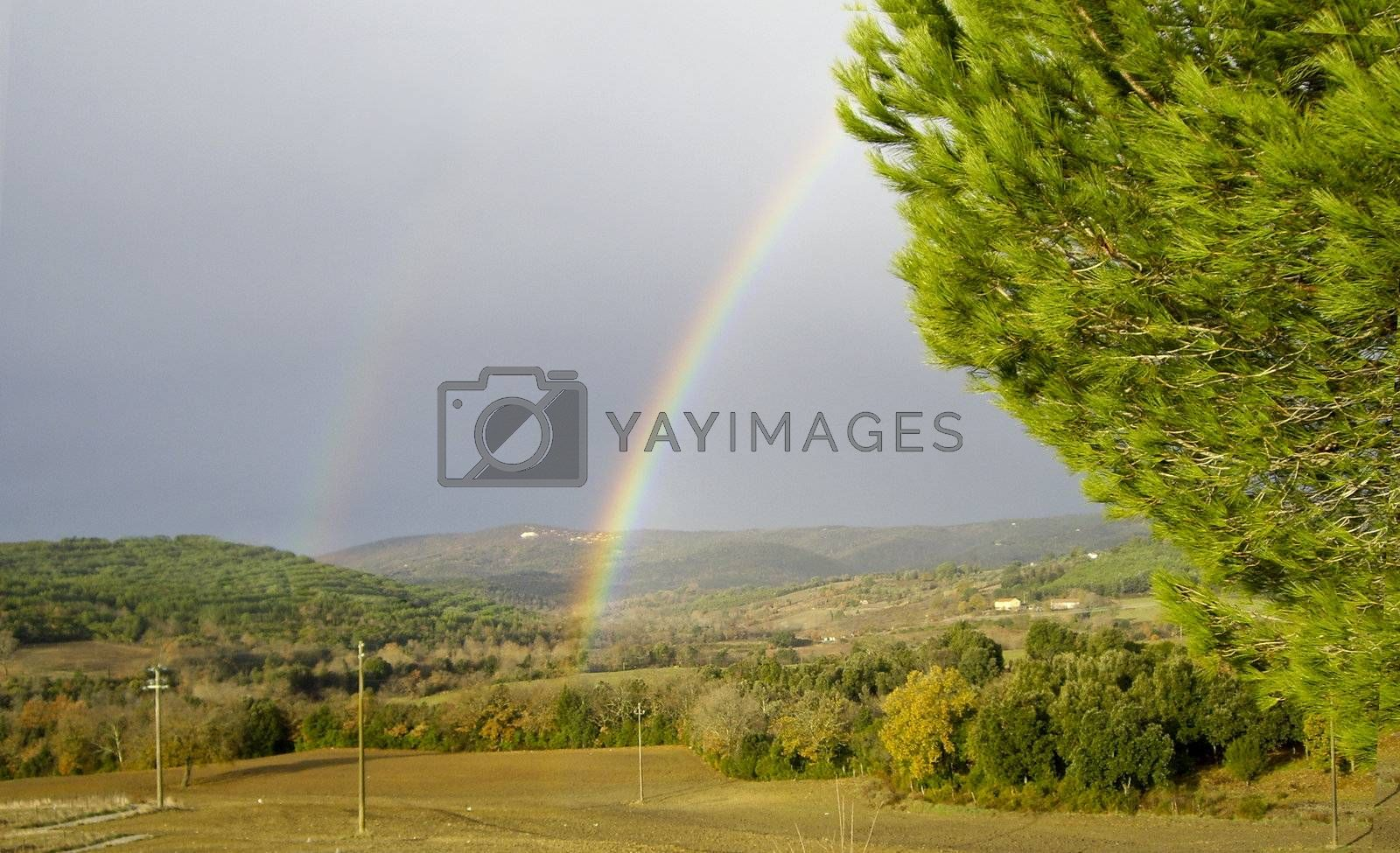Royalty free image of Rainbow by carla720